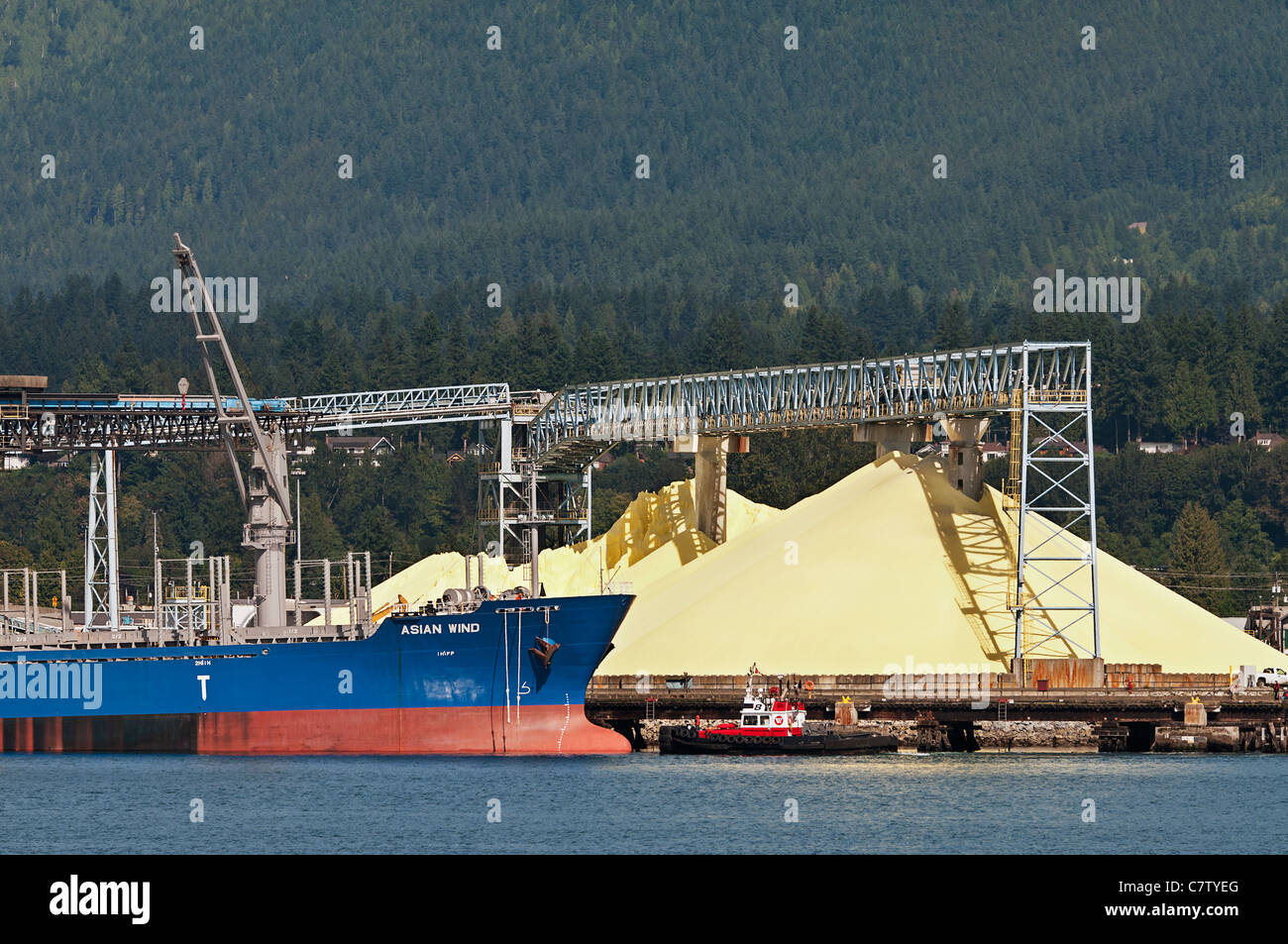 A freighter, 'Asian Wind', docks at Vancouver Wharves bulk cargo terminal, North Vancouver, Canada. - Stock Image