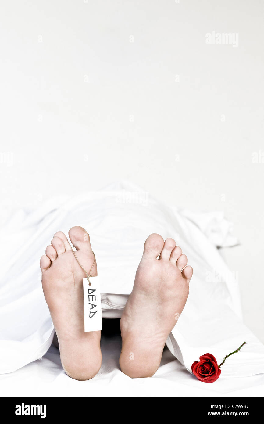 Human cadaver, detail of foot with toe tag - Stock Image