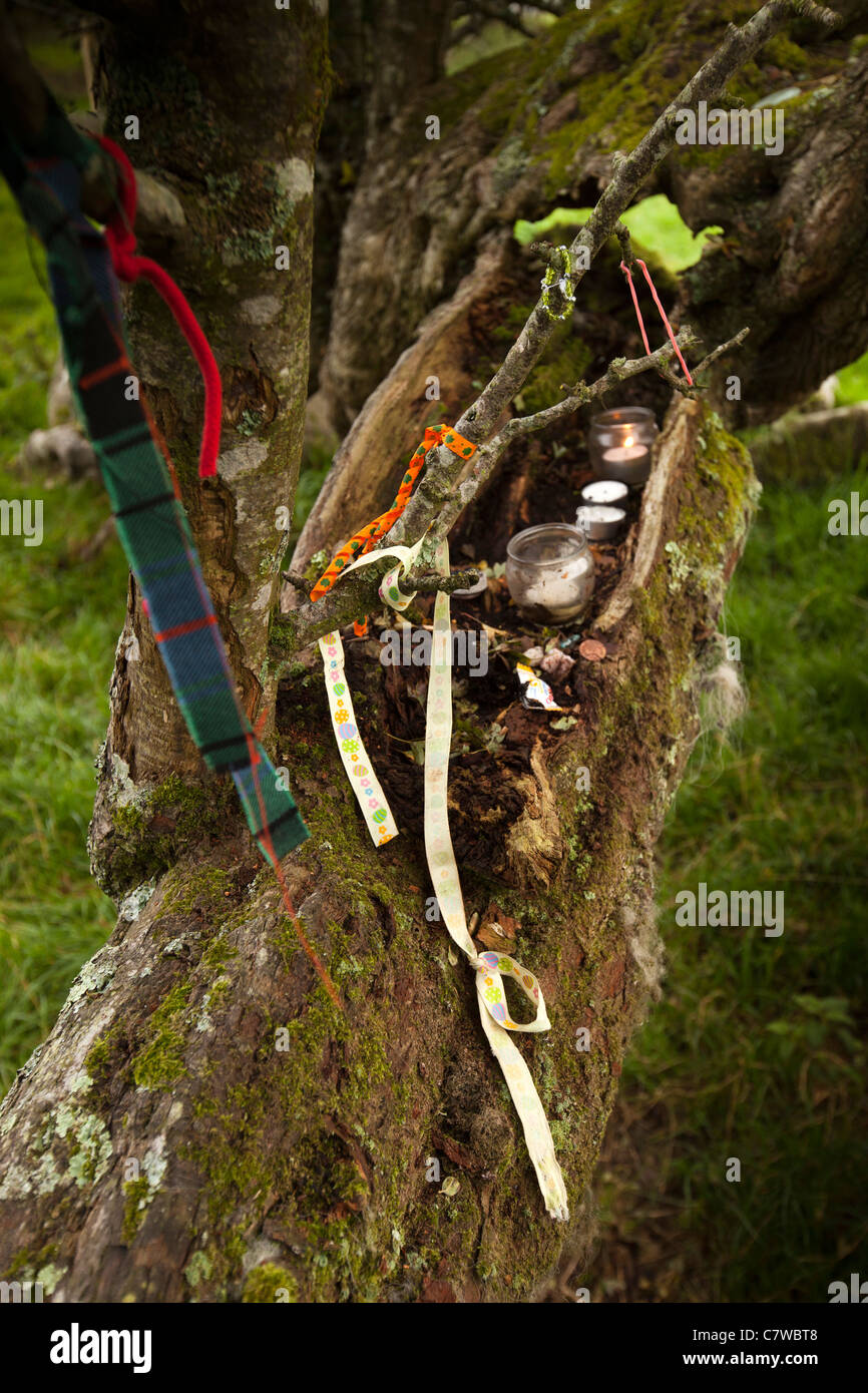 Ireland, Co Wicklow, Hollywood, Piper's Stones, pre-historic stone circle, pagan offerings in tree - Stock Image