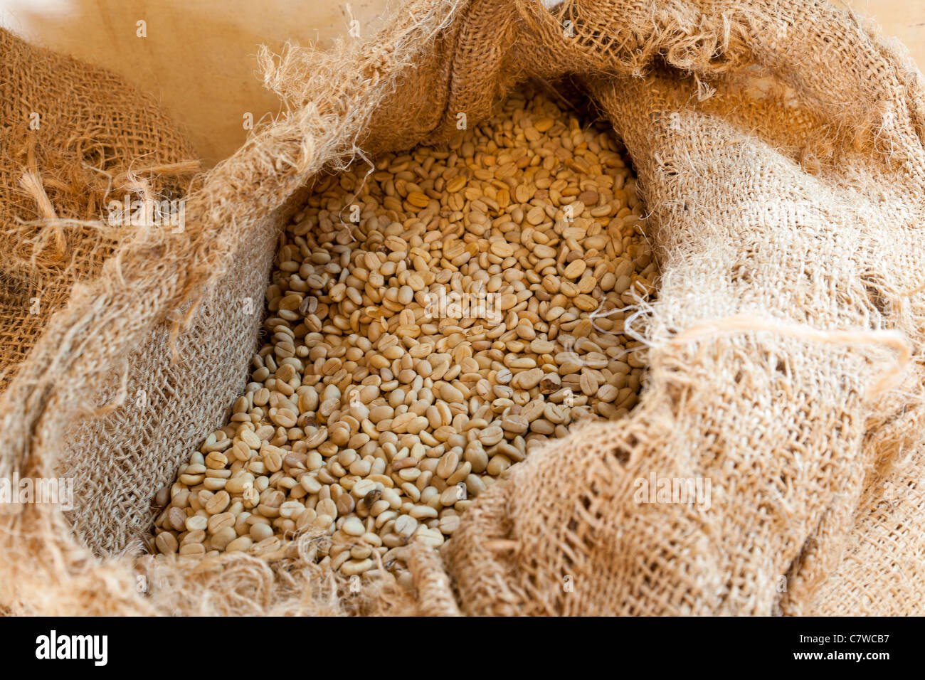 Unroasted coffee beans in a sack, - Stock Image