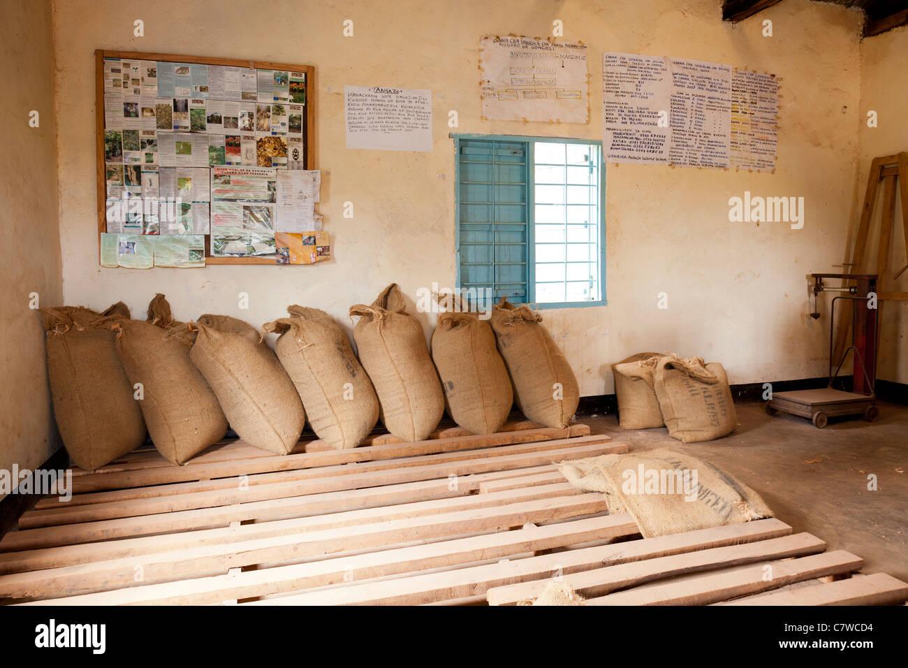 Sacks of coffee at the KNCU Mrimbo Uuwo Primary Society Office, Moshi, Tanzania - Stock Image