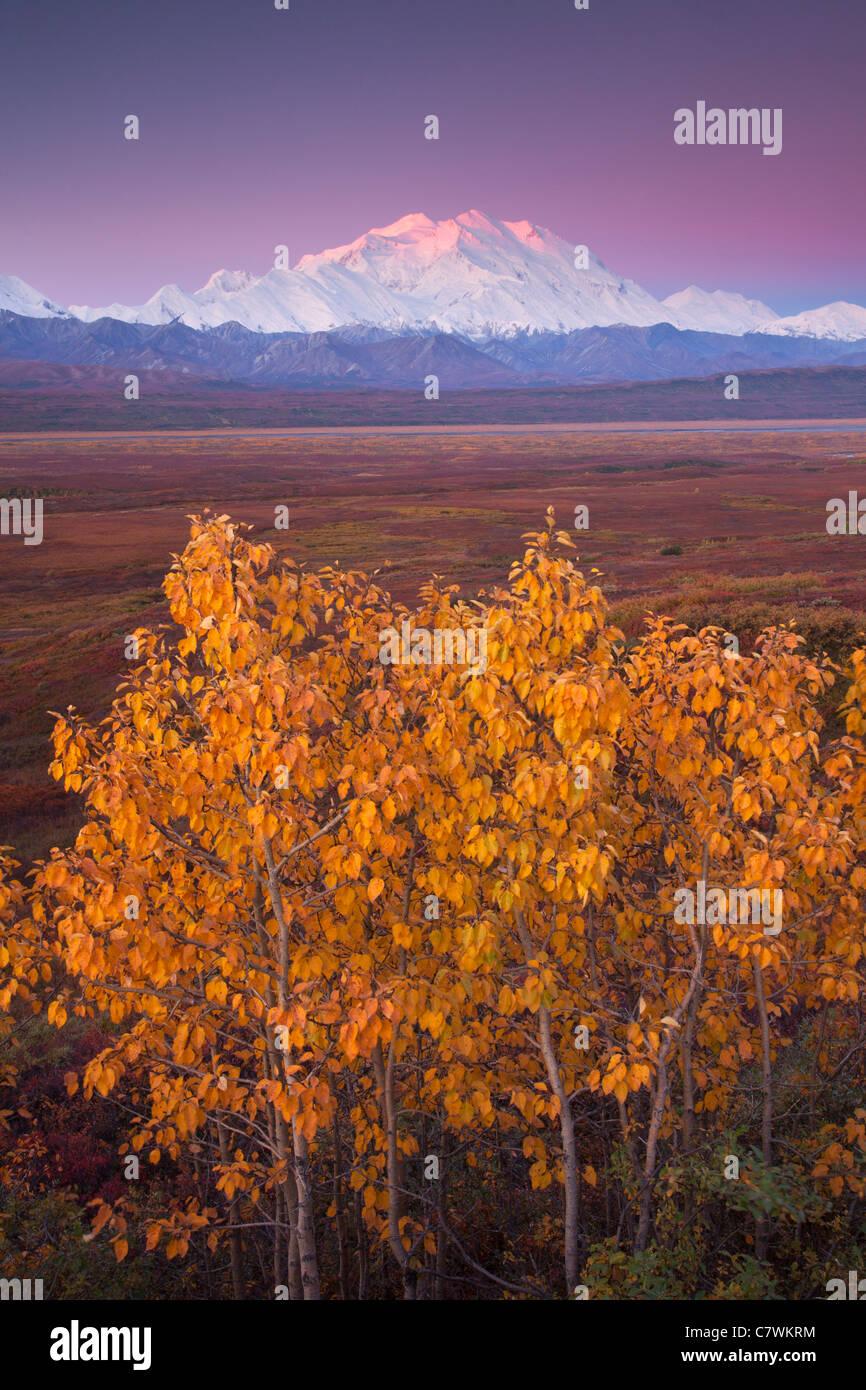 Mt McKinley, also called Denali, Denali National Park, Alaska. - Stock Image