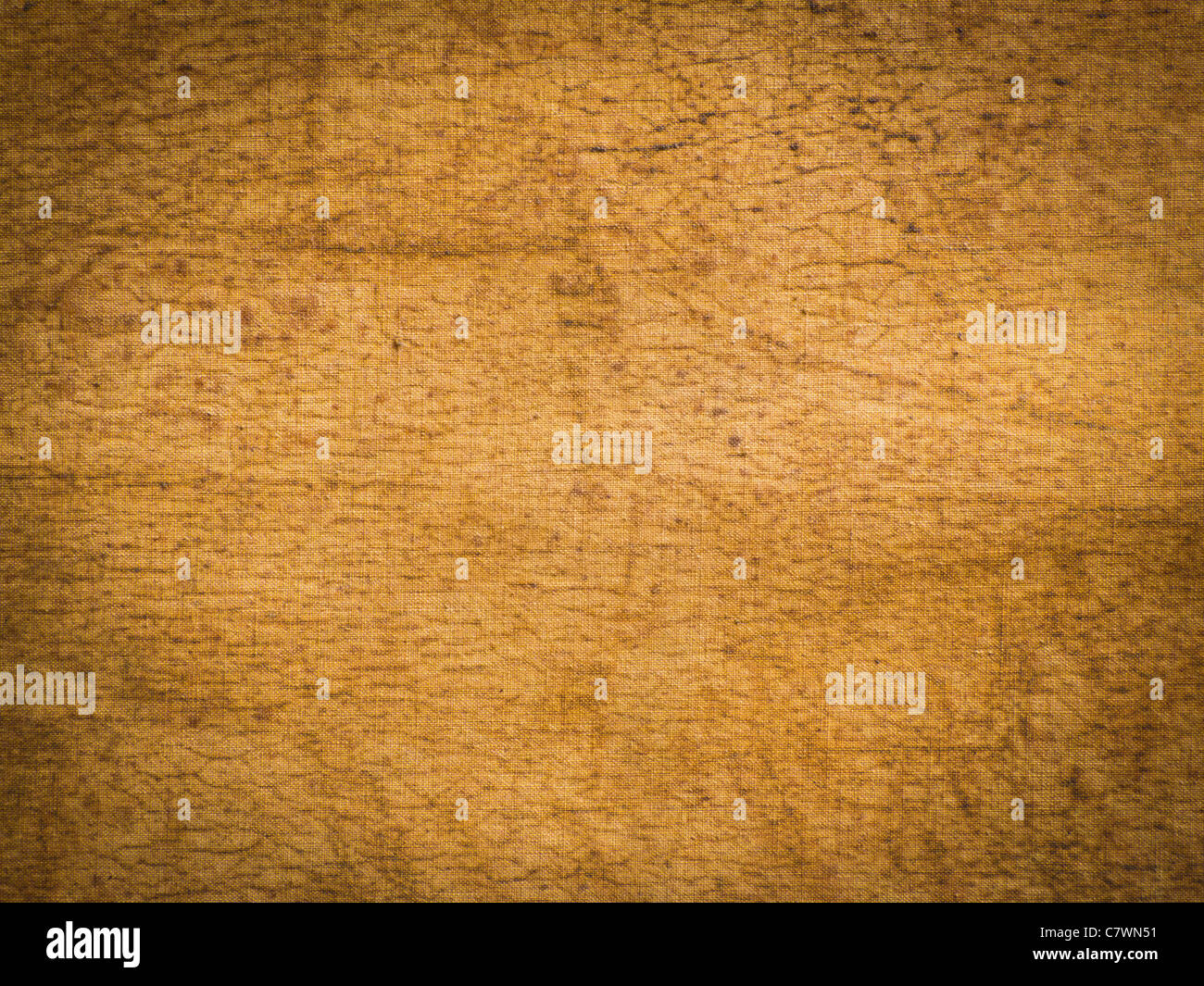 Canvas Grungy Texture - Stock Image