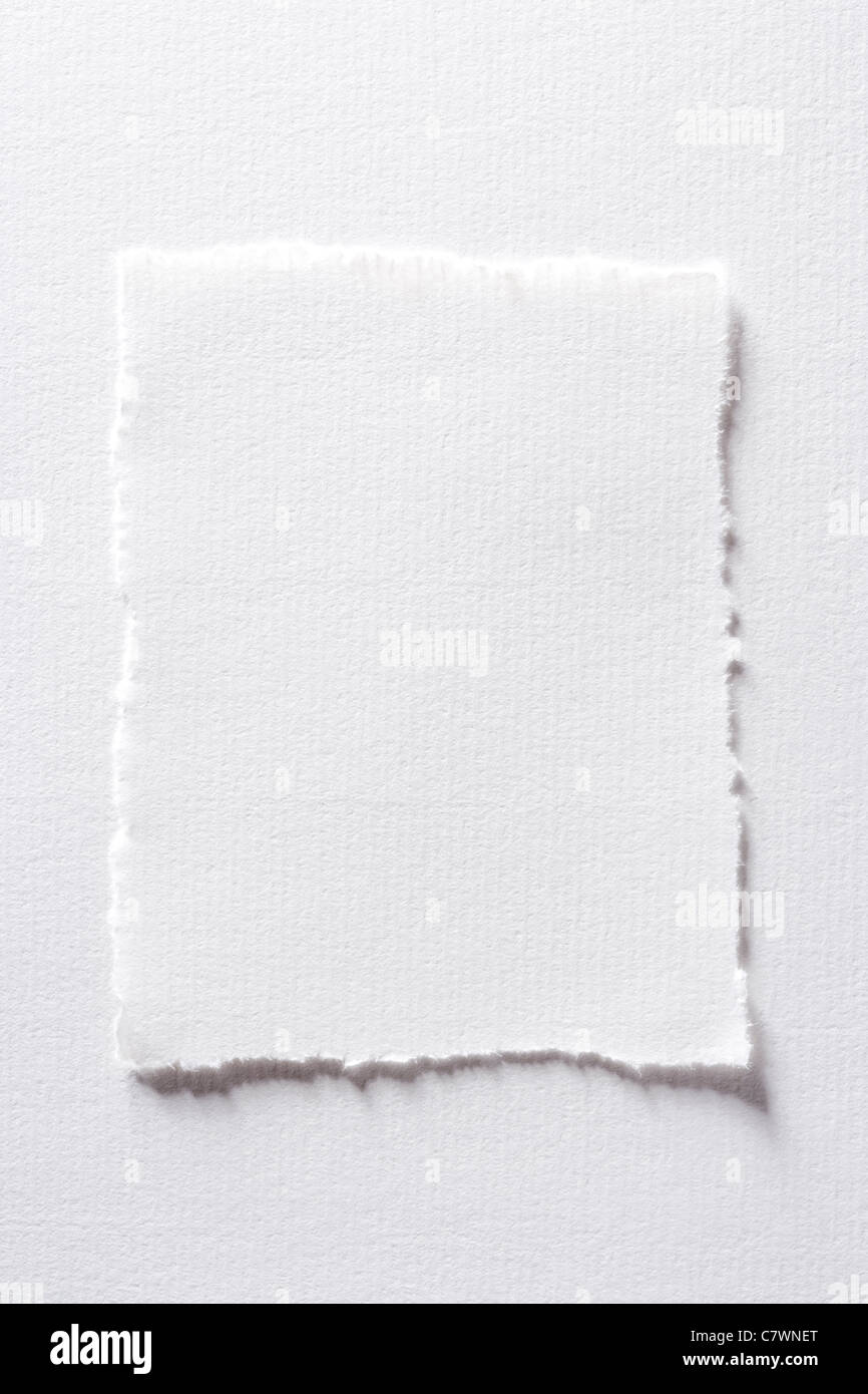 Rectangle of torn paper. - Stock Image