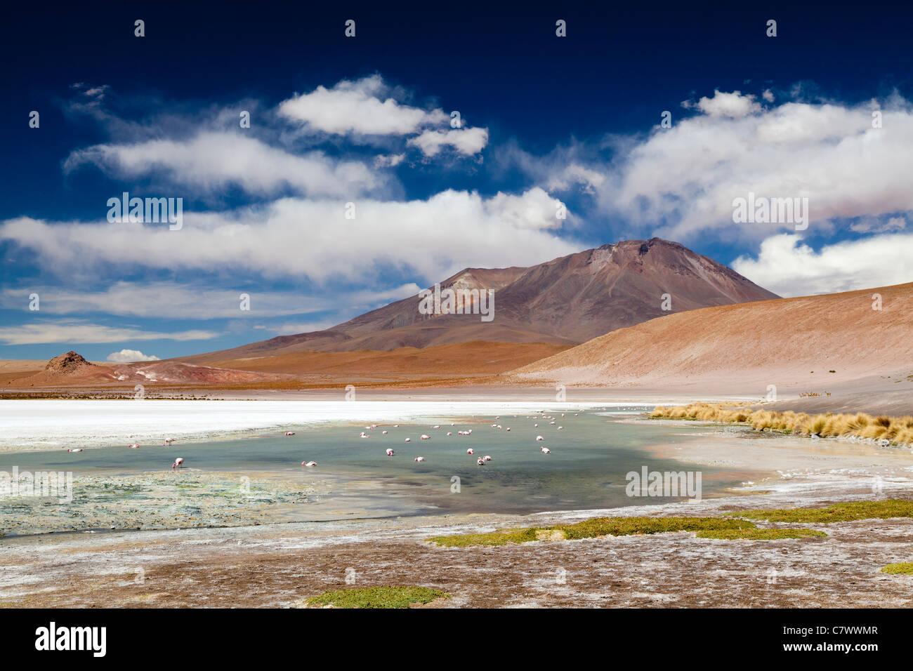 The stunning scenery of the Bolivian altiplano, between San Pedro de Quemez and Ojo de Perdiz - Stock Image