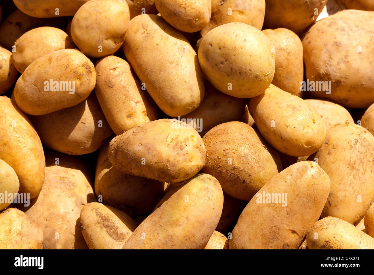 brown potatoes pattern texture in market - Stock Image