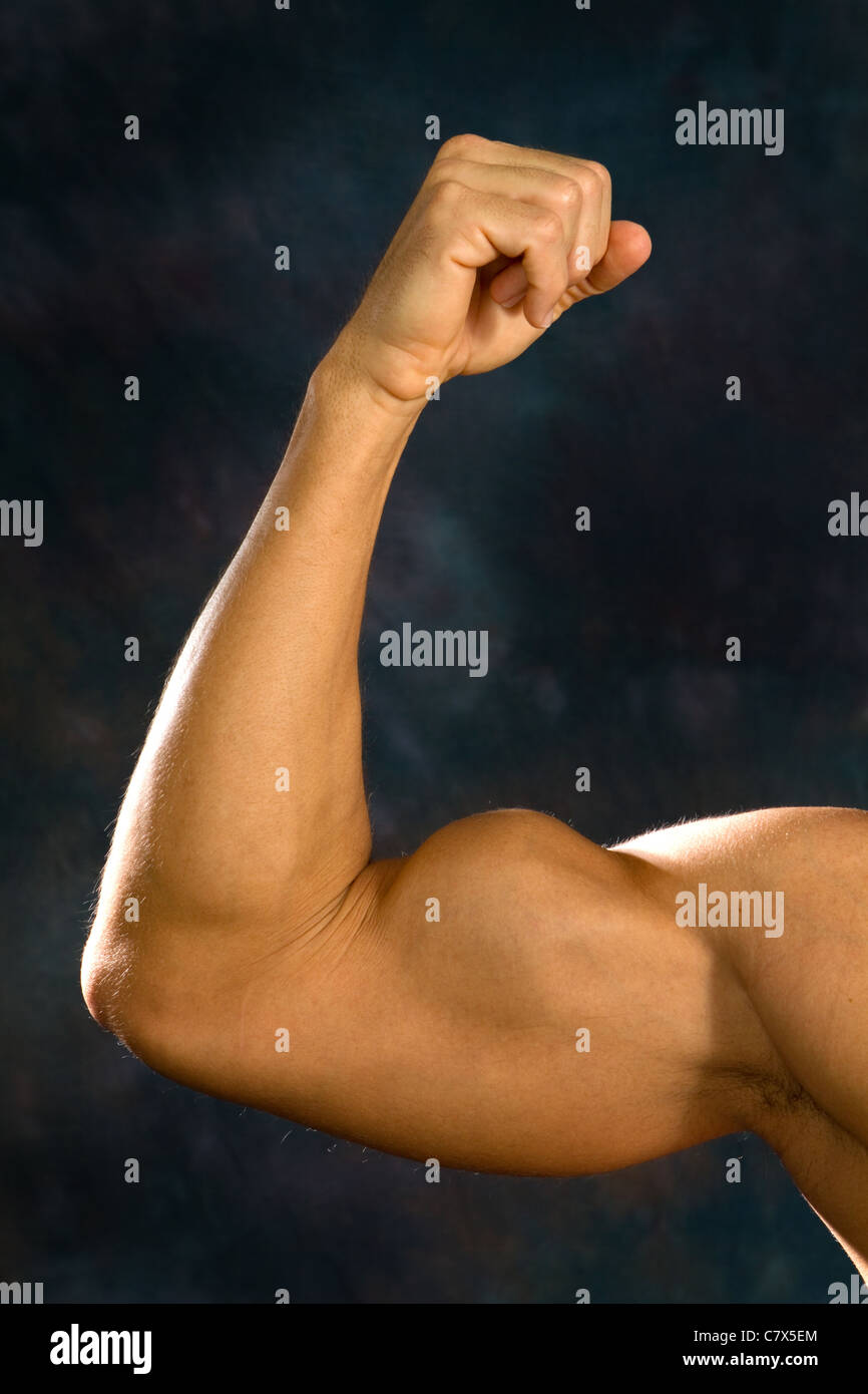 Man shows off his biceps brachii muscles. - Stock Image