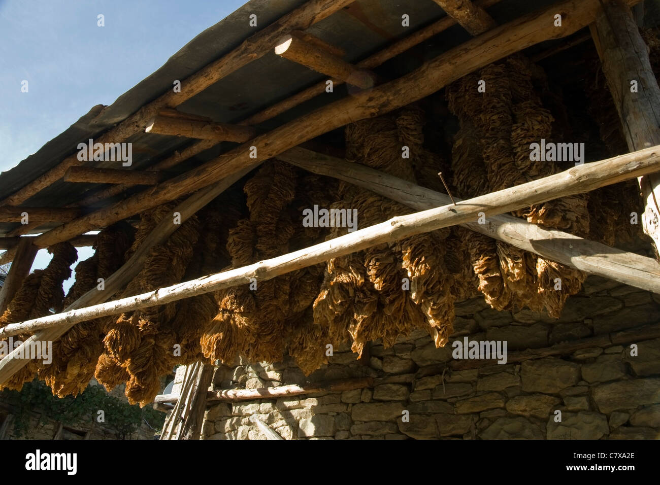 An old house in village of Ilinitza with tobacco leaves under the roof, Kurdjali region, South Bulgaria, Eastern - Stock Image