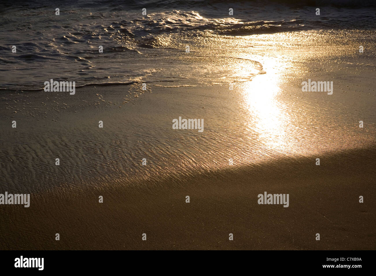 Sun glares off wet sand on water's edge - Stock Image
