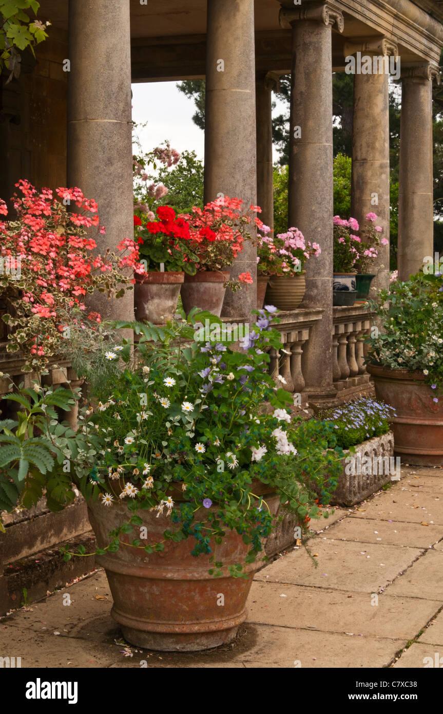 Large Terracotta Pots Flowers Stock Photos & Large
