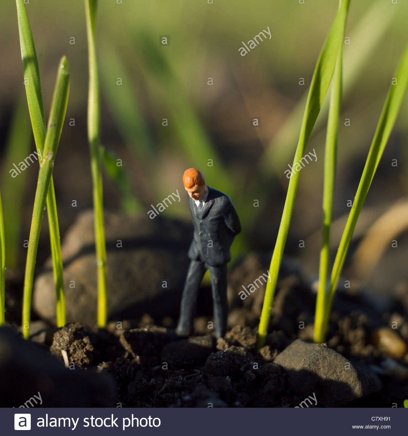 Solitary young male figure walking alone looking down - Stock Image