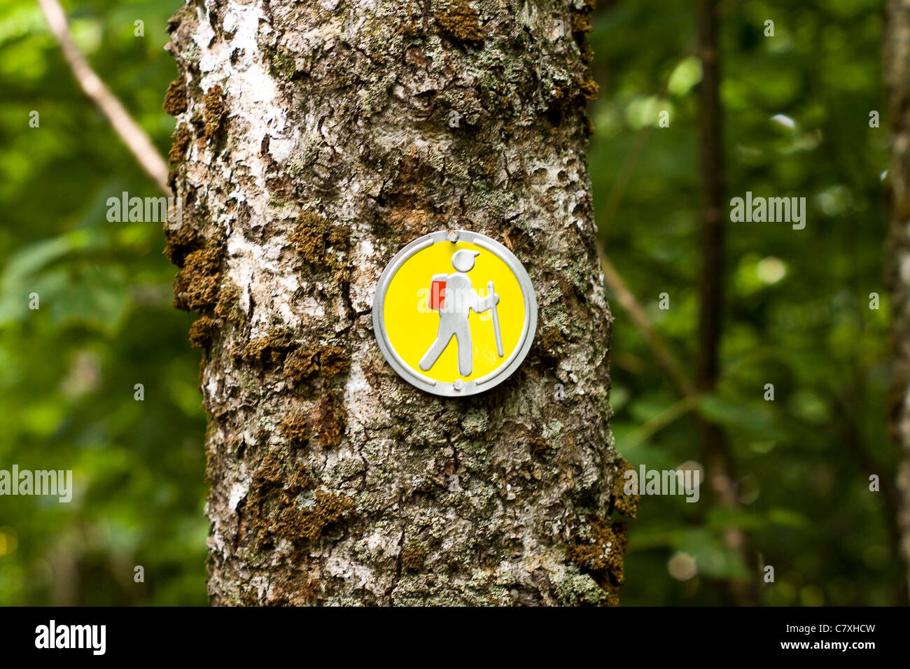 Guidance signs in Fundy National Park, Bay of Fundy, New Brunswick, Canada - Stock Image
