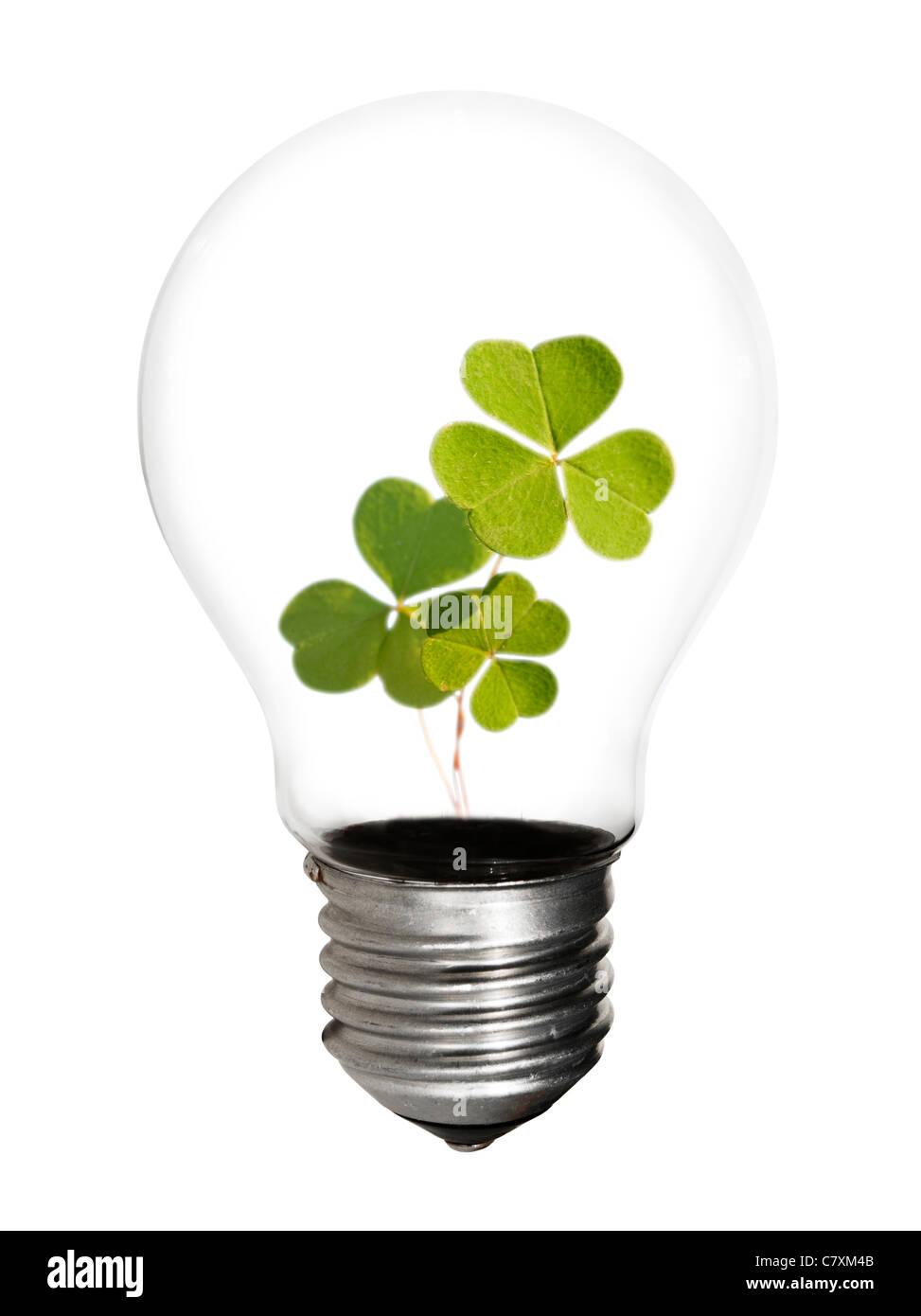 The future holds renewable energy - Stock Image