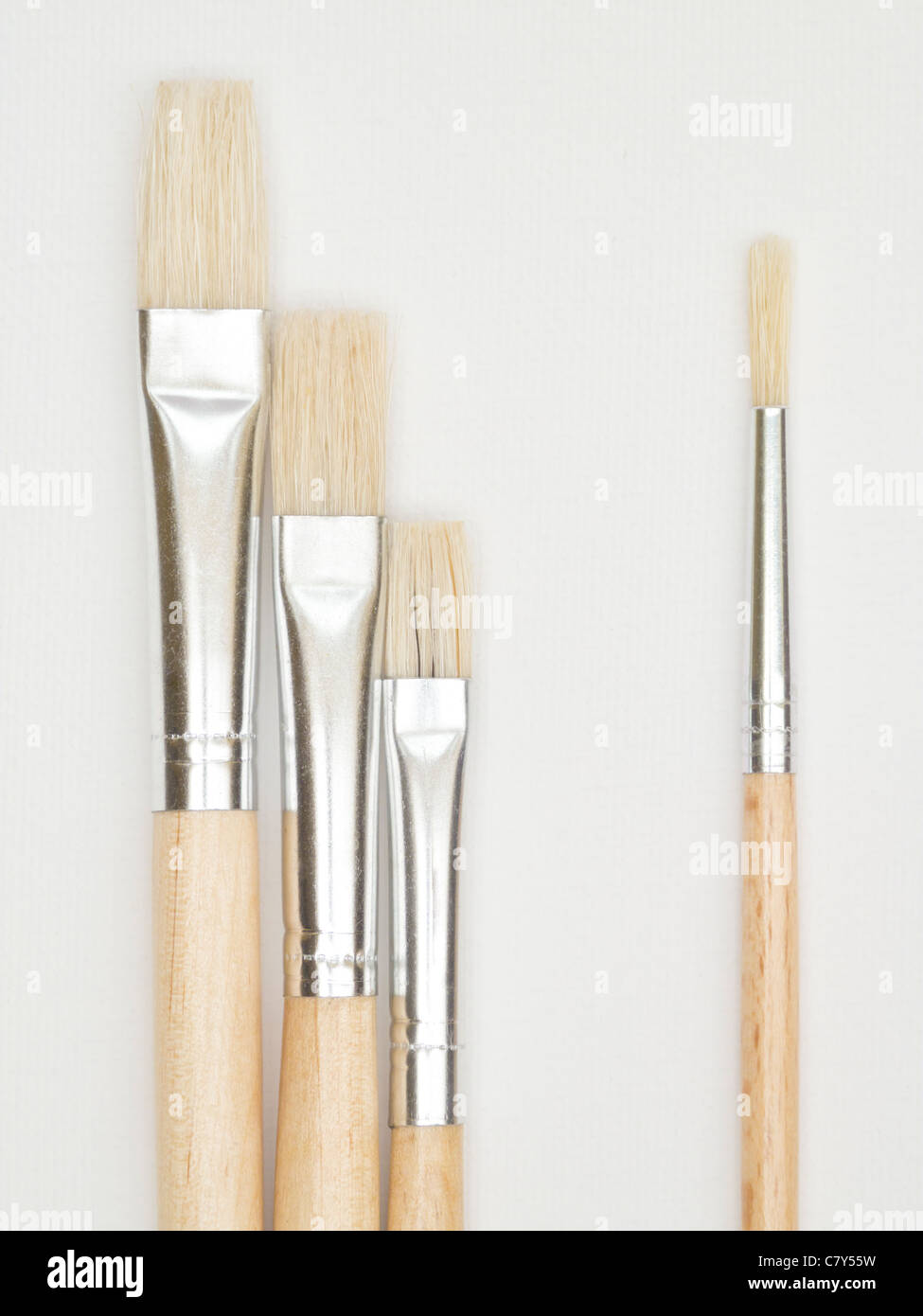 Paint Brushes on Canvas - Stock Image