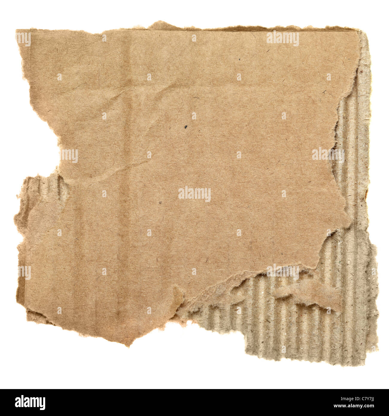 Scrap of cardboard isolated over the white background - Stock Image