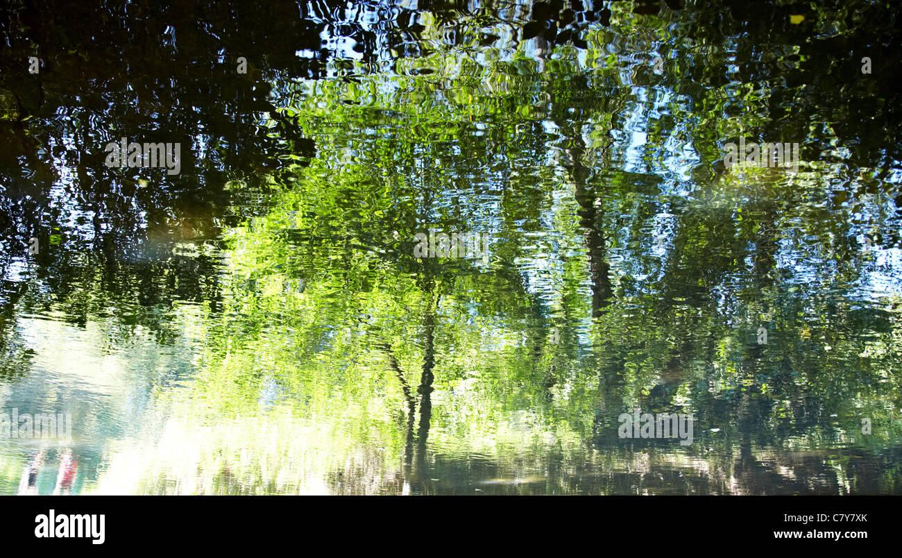 Water Reflections River Mole Boxhill Surrey UK Stock Photo
