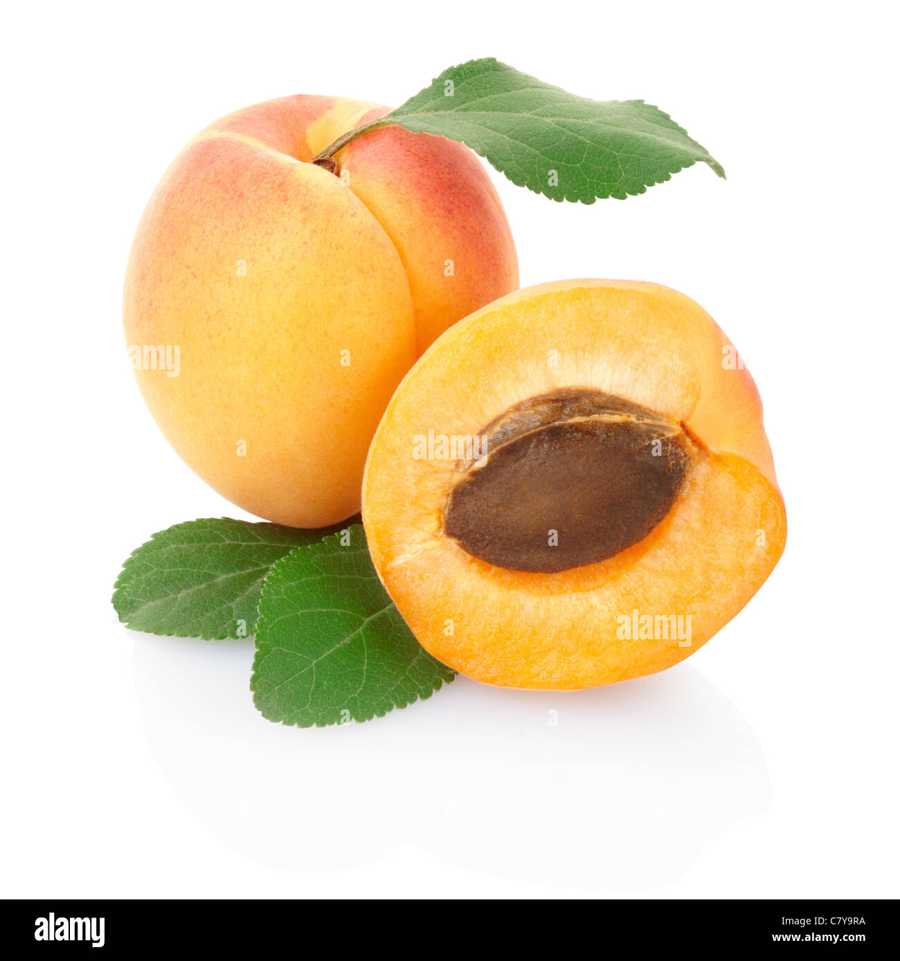 Apricot with leaves - Stock Image