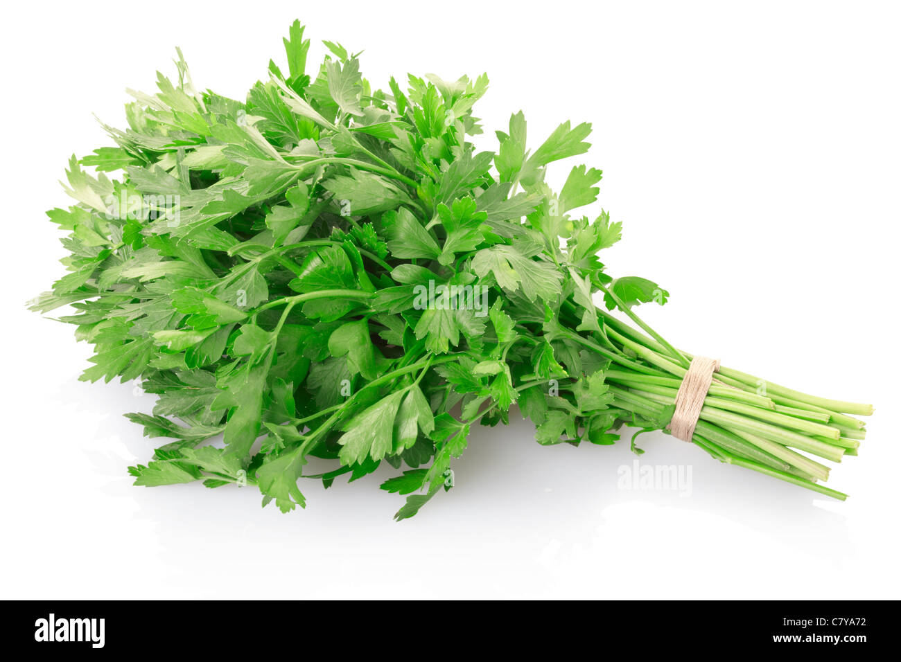 Green parsley bunch - Stock Image