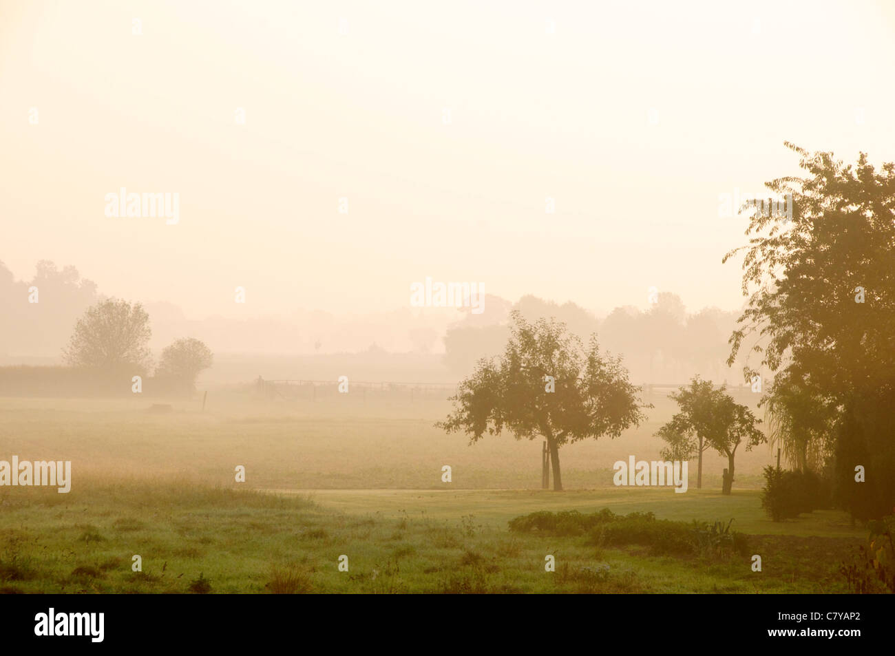Morning landscape during sunrise with some fog near Petershagen in Westphalia. - Stock Image