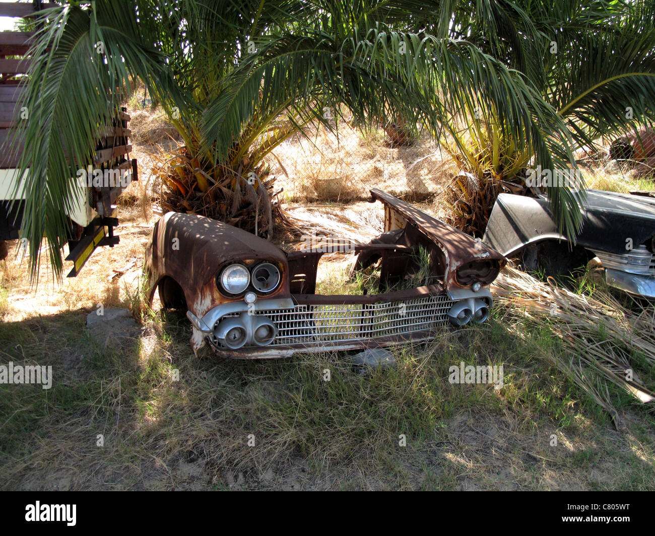 Car junk yard with bonnet of car by palm tree - Stock Image