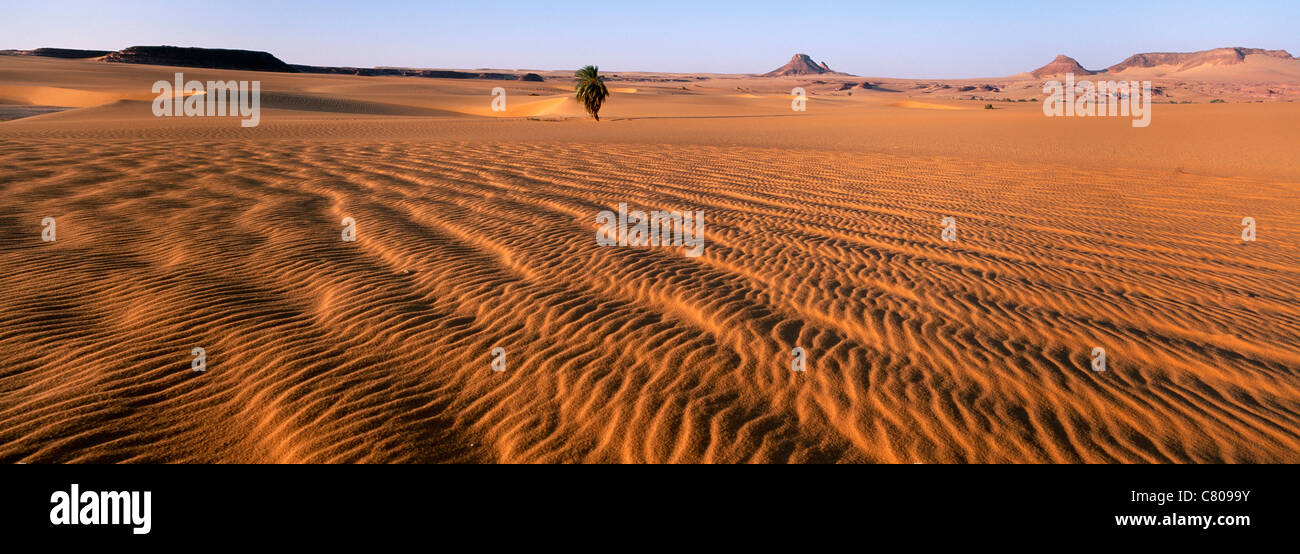 Africa, Chad, Ounianga Serir, Teguedei lake, the desert - Stock Image
