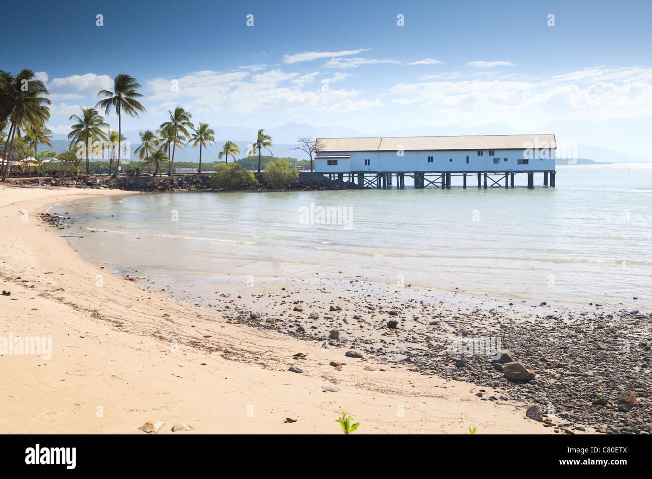 port douglas tropical queensland australia boat house with palm trees sand on beach pole house - Stock Image