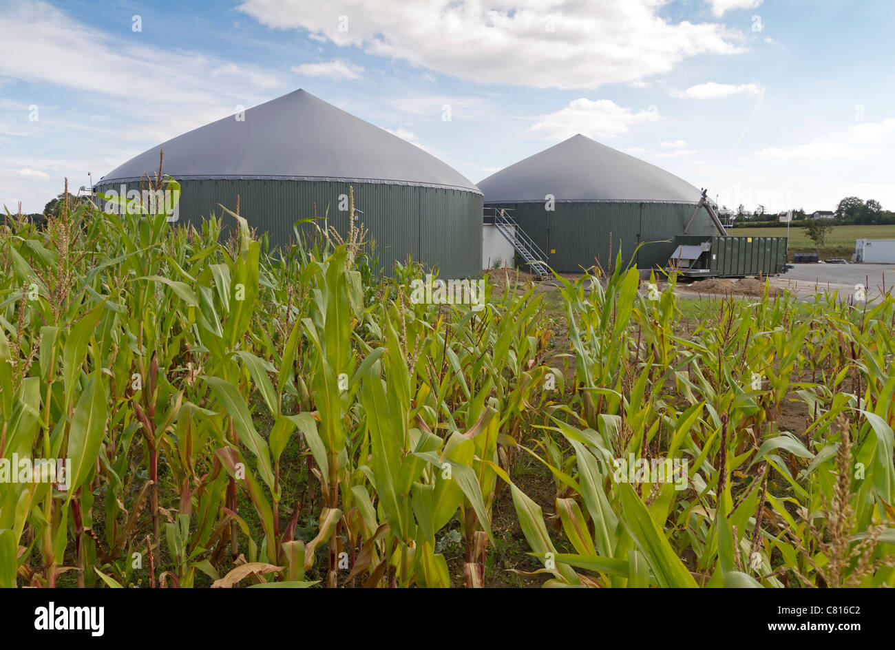 Biogas plant with cornfield - Stock Image