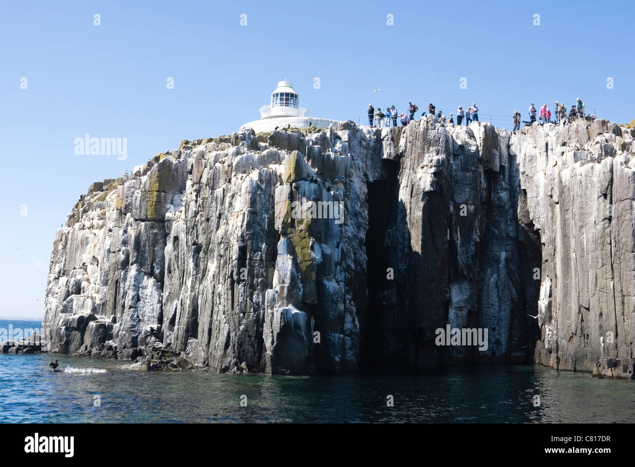 Inner Farne Lighthouse and tourists photographing the seabird colony. Farne Islands, Northumberland Coast, England. - Stock Image