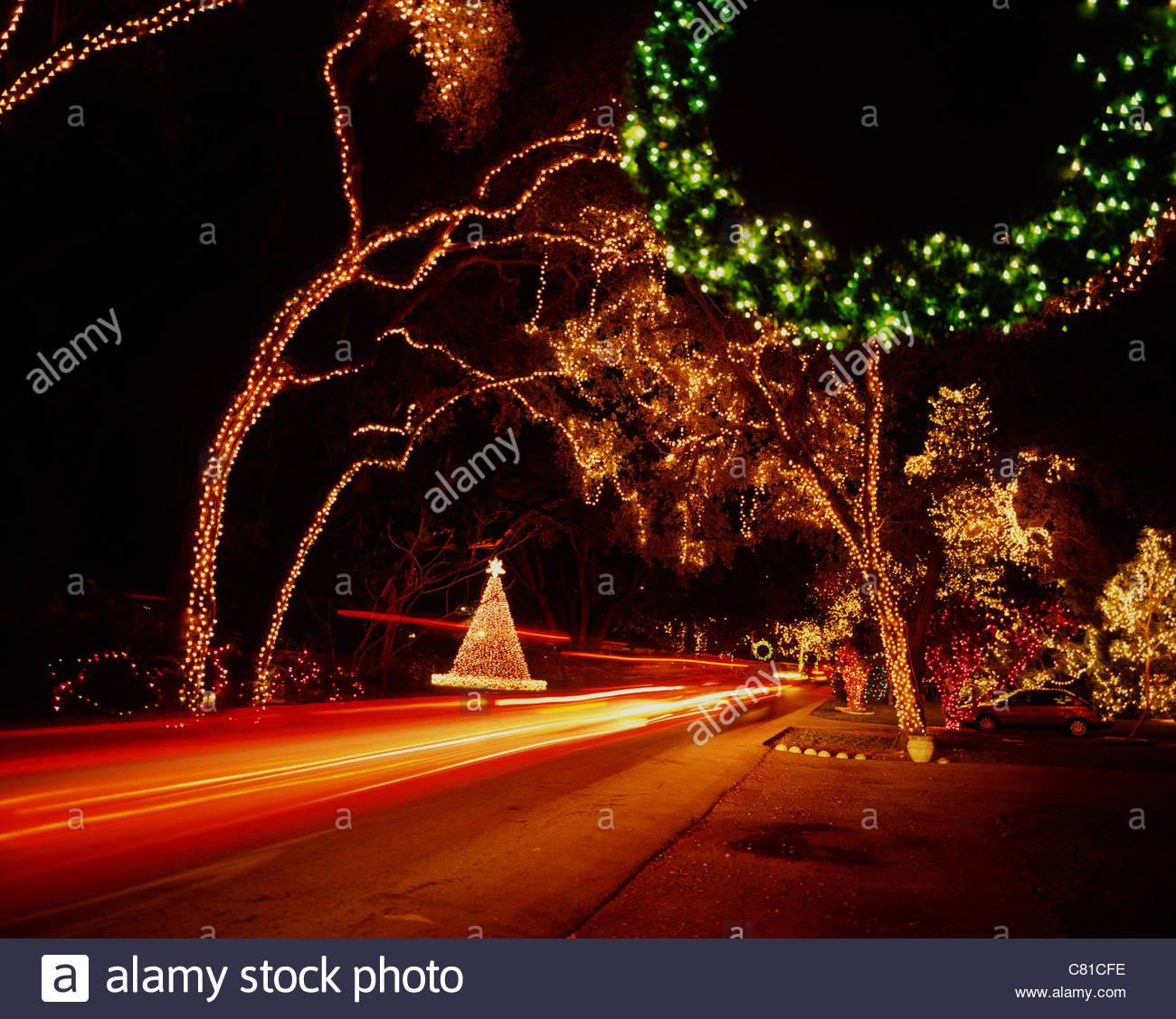usa florida miami trees with christmas lights stock image