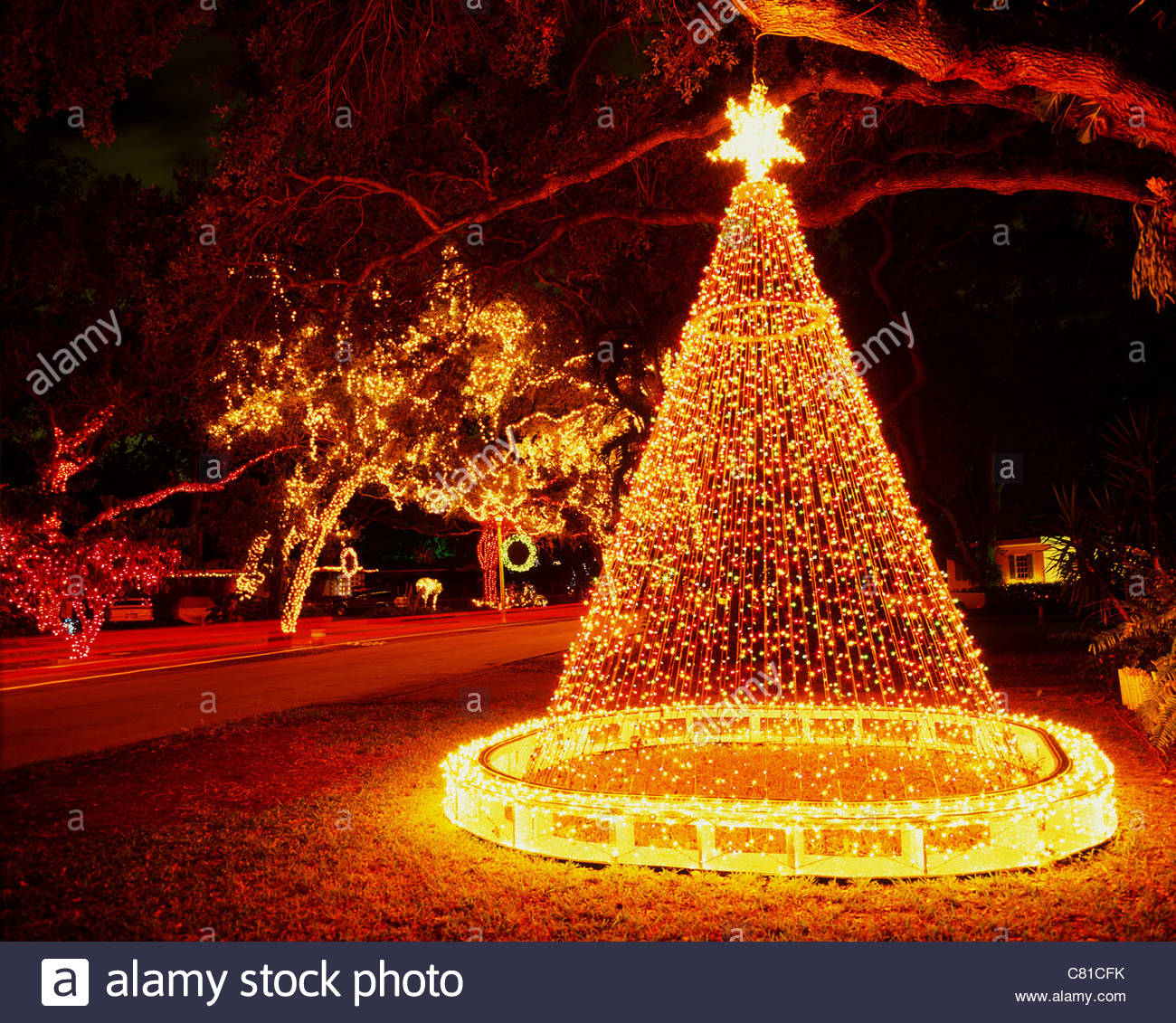 Town Christmas Florida Tree Stock Photos & Town Christmas