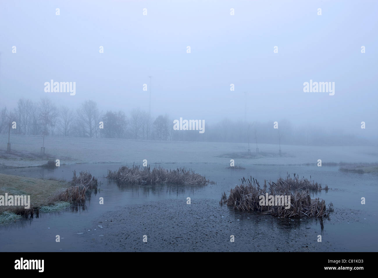 Winter morning in Denmark - Stock Image