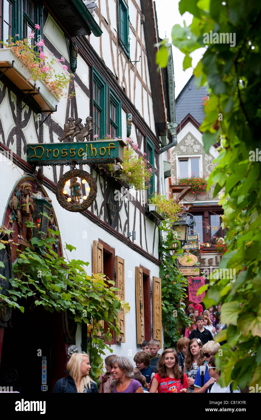 Famous tourist Drosselgasse Street in popular town of Rudesheim on River Rhine in Germany - Stock Image
