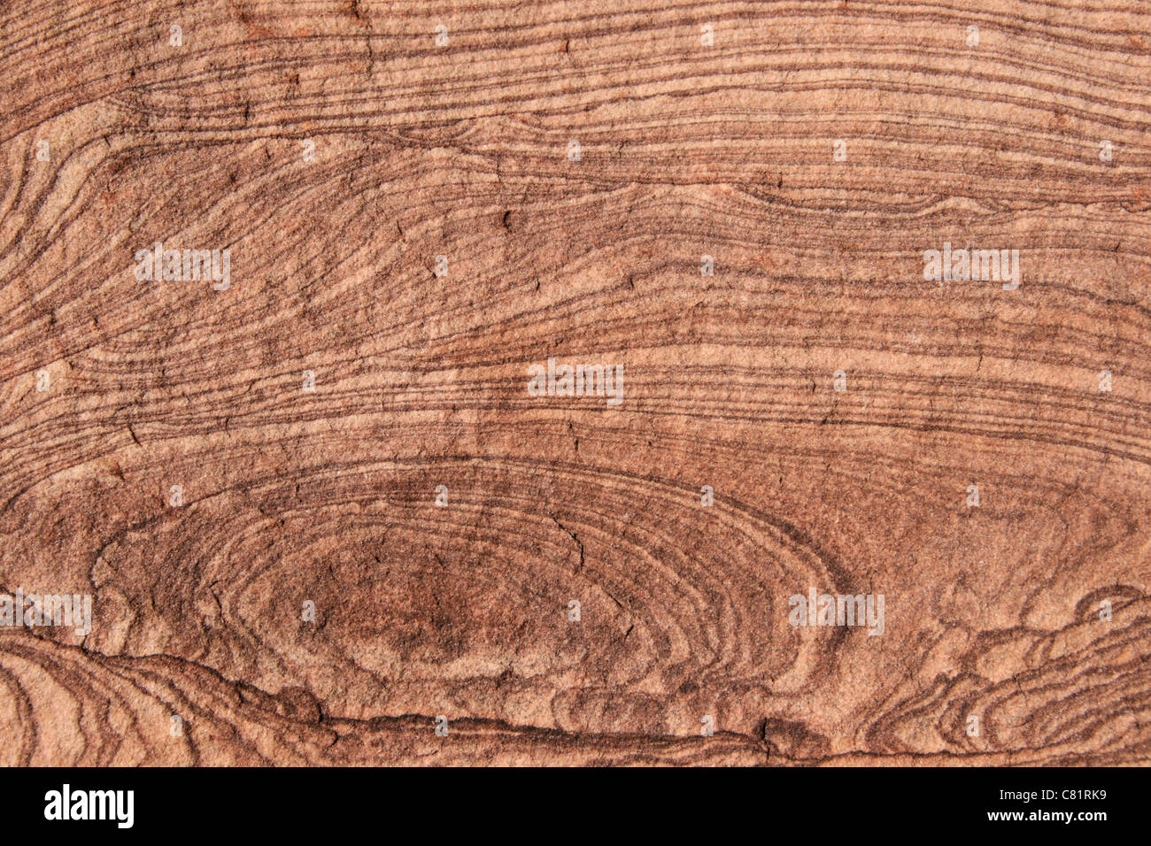 sandstone background surface with banded texture Stock Photo
