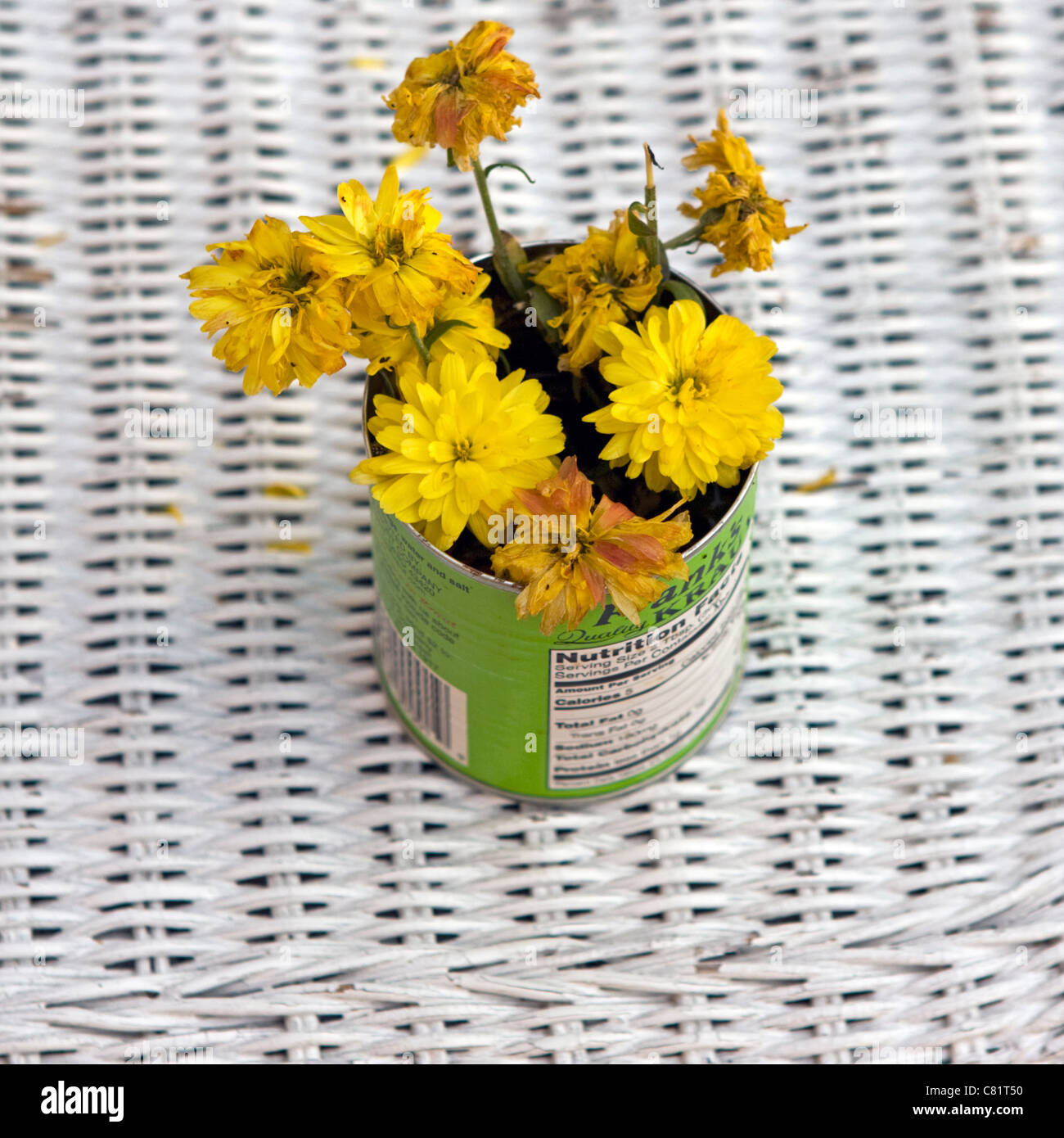 Wildflowers are put in a used tin can to brighten up the surroundings. - Stock Image