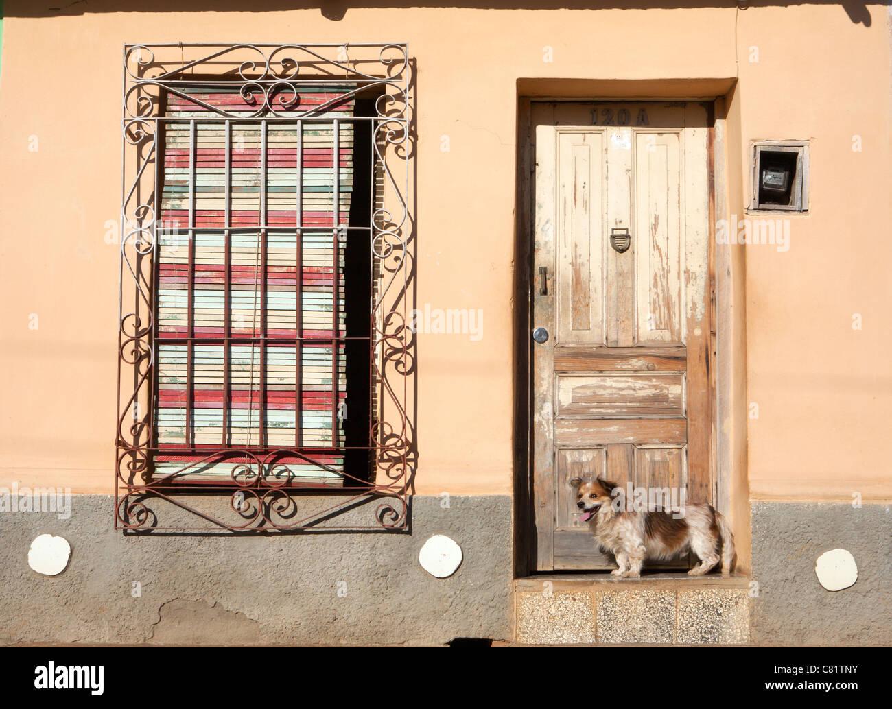 TRINIDAD: DOG IN DOORWAY - Stock Image