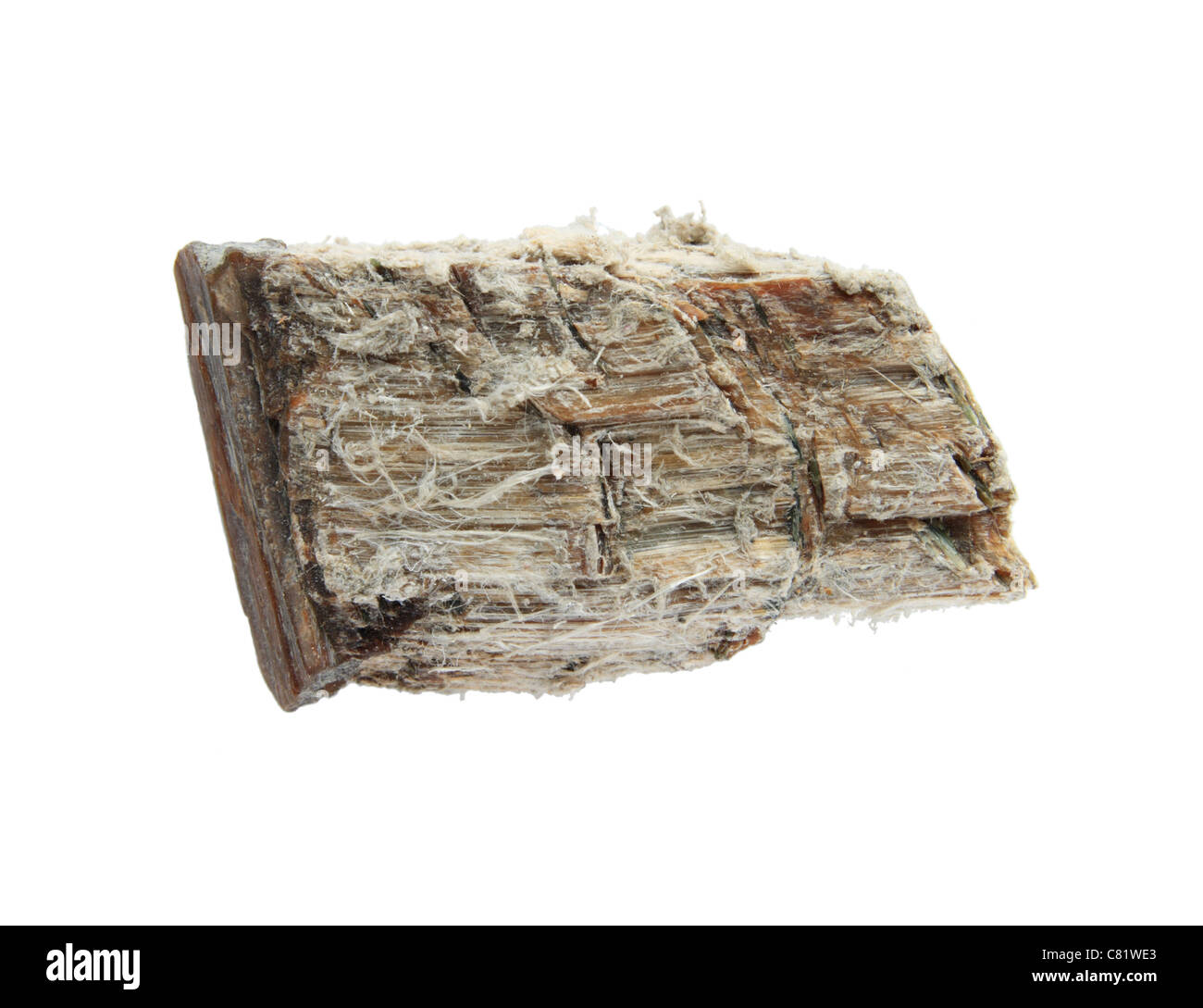 asbestos mineral sample isolated on white - Stock Image