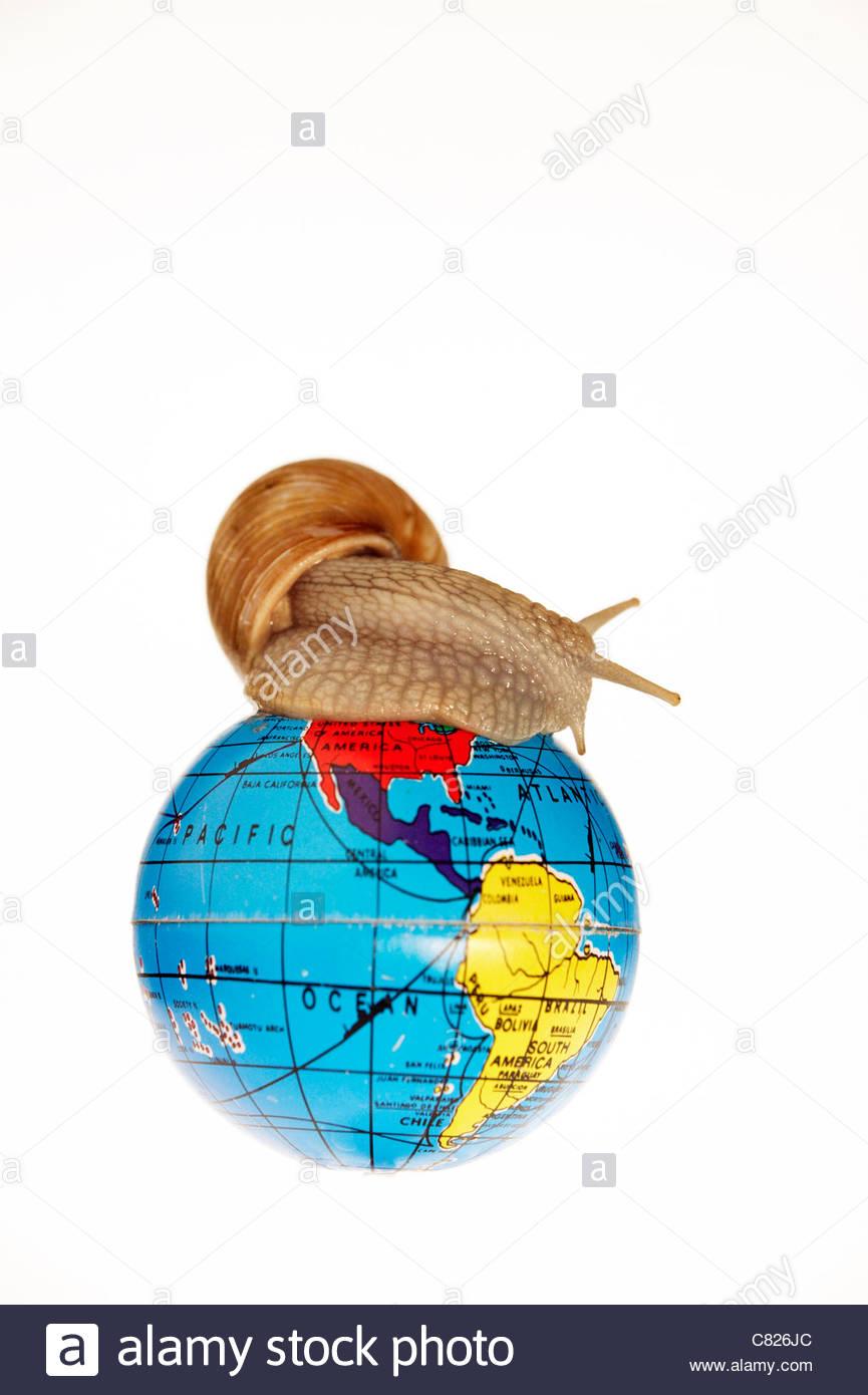 Snail on globe - Stock Image