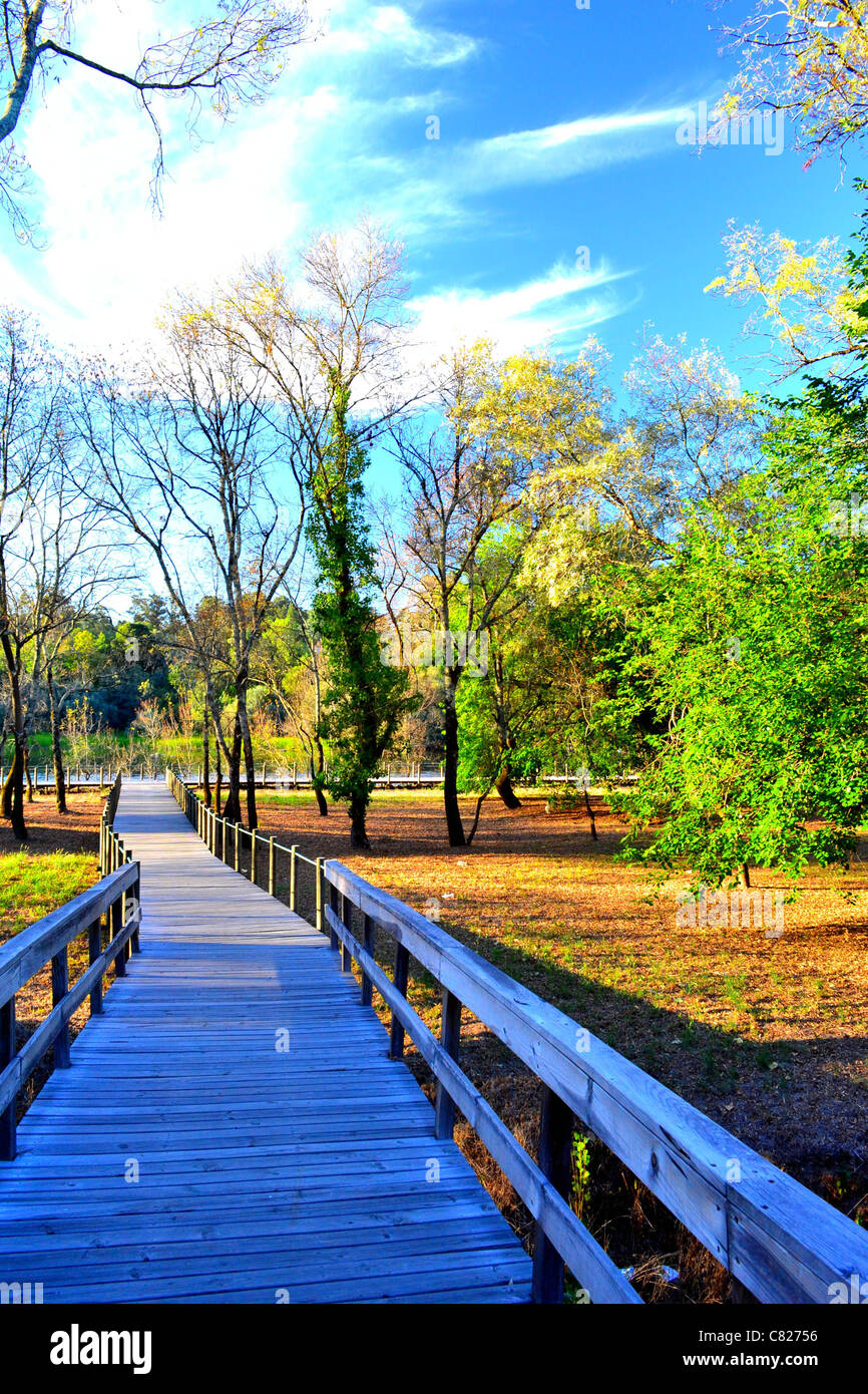 A feel good colorful photo of a park in northern Portugal - Stock Image