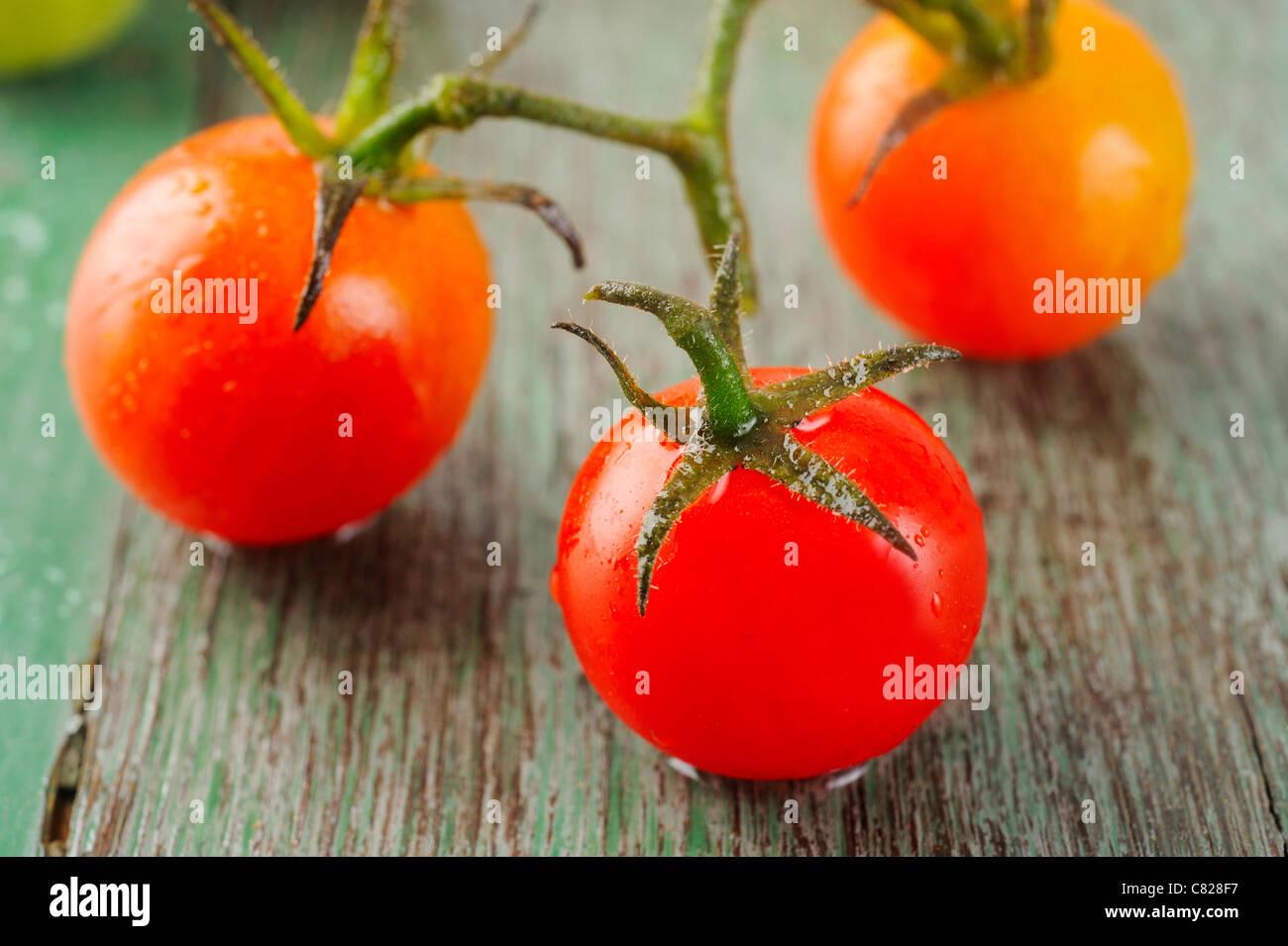 Tomato on wood - Stock Image