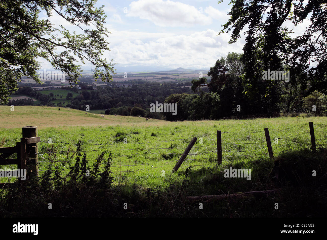 Countryside near Dryburgh in the Scottish Borders - Stock Image