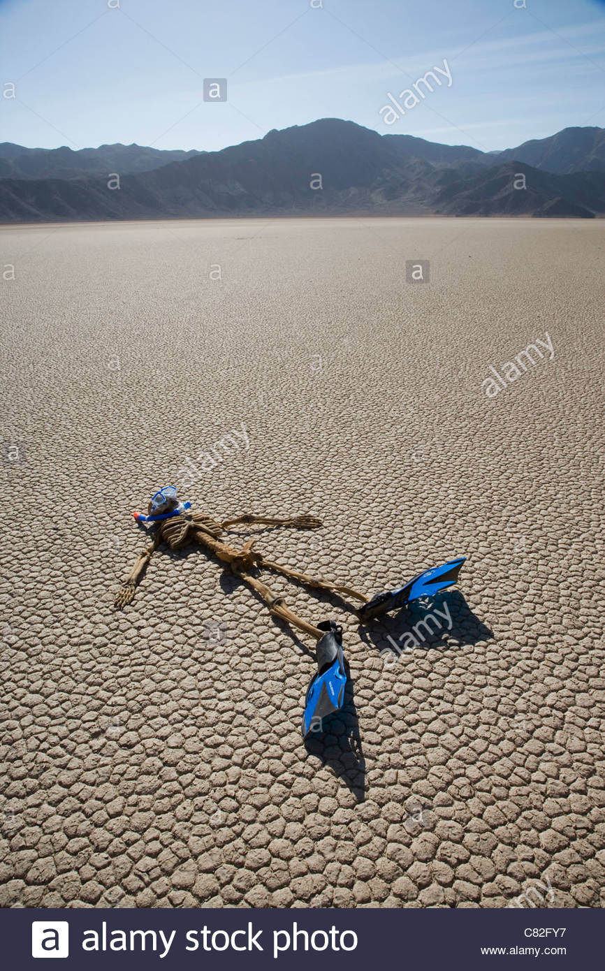 USA, California, Death Valley, skeleton with flippers on cracked Stock Photo