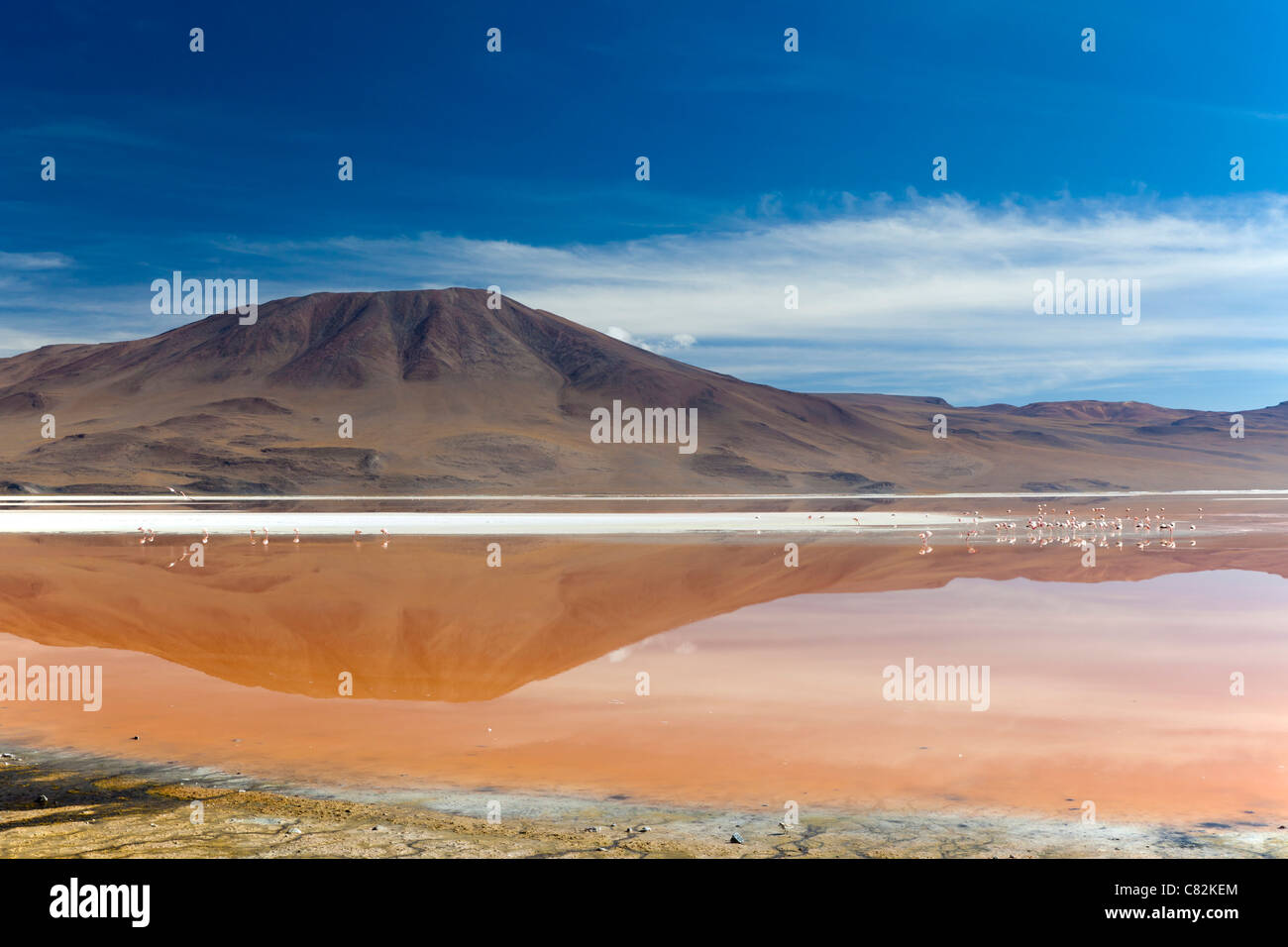 The stunning Laguna Colorada (Red Lagoon) in the Bolivian Altiplano Stock Photo