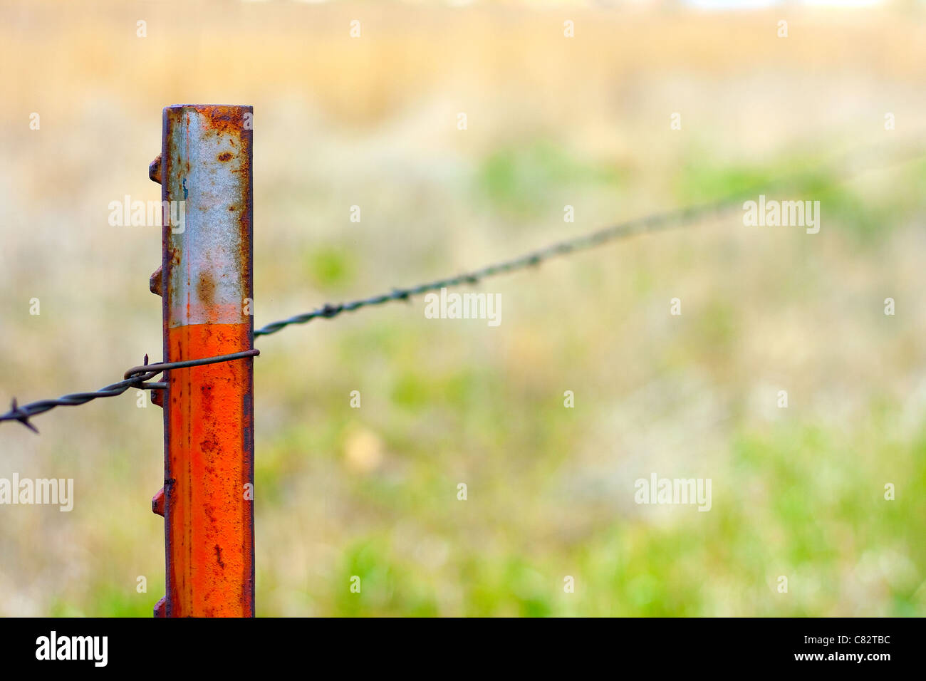 Metal Fence Post On Metal Fence Post Holding Barbed Wire Stock Image Metal Fence Post Photos Images Alamy