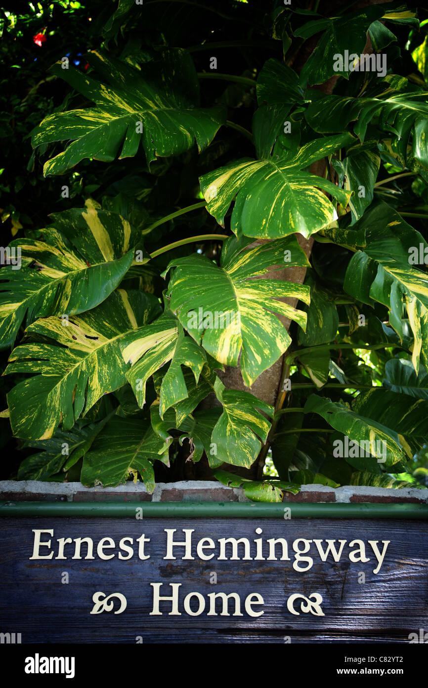 Ernest Hemingway Home, Key West, Florida, USA Stock Photo