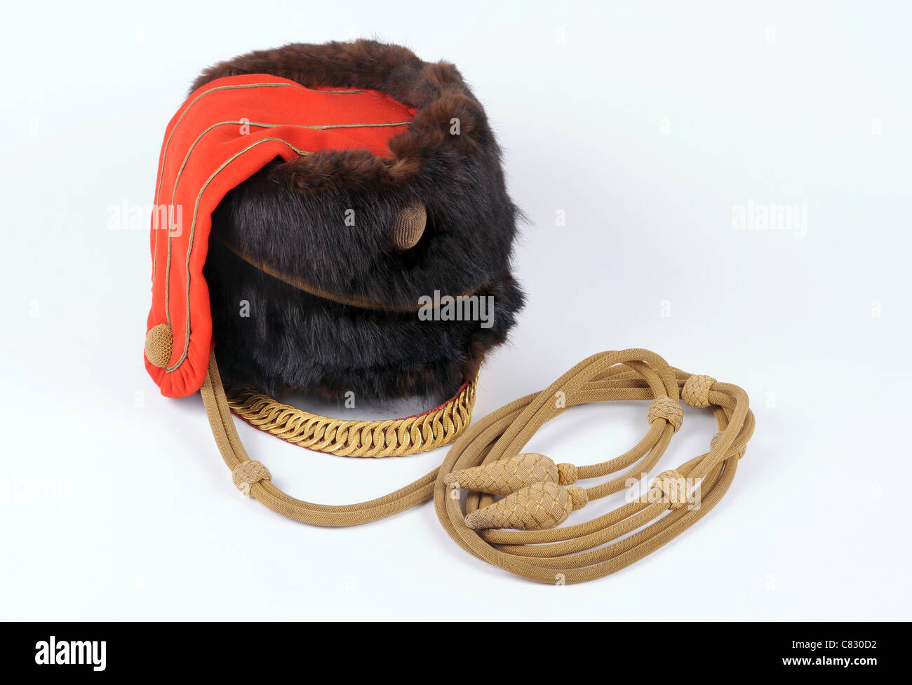Victorian X (Tenth) Hussars officer's Sable fur busby with gilt cords and chinstrap.  A highly ornate antique - Stock Image