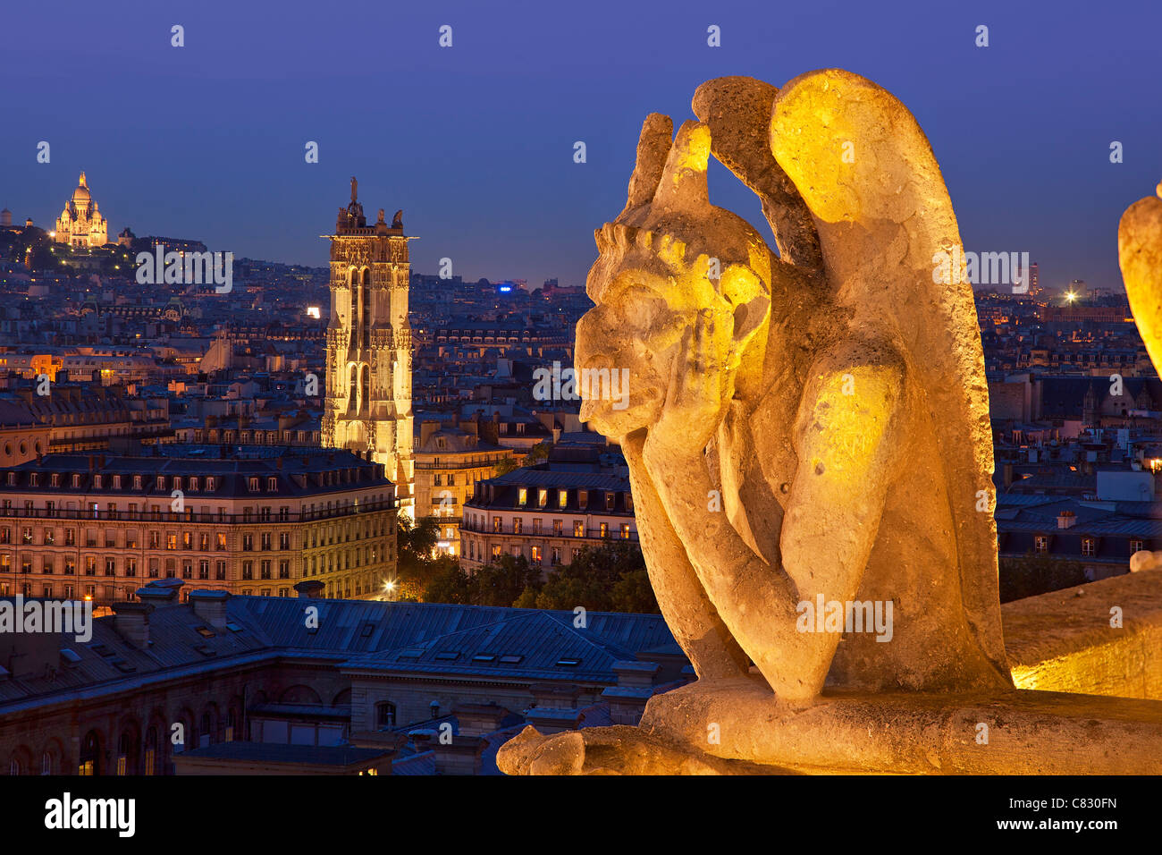 France, Paris, view over Paris from Notre Dame Cathedral - Stock Image