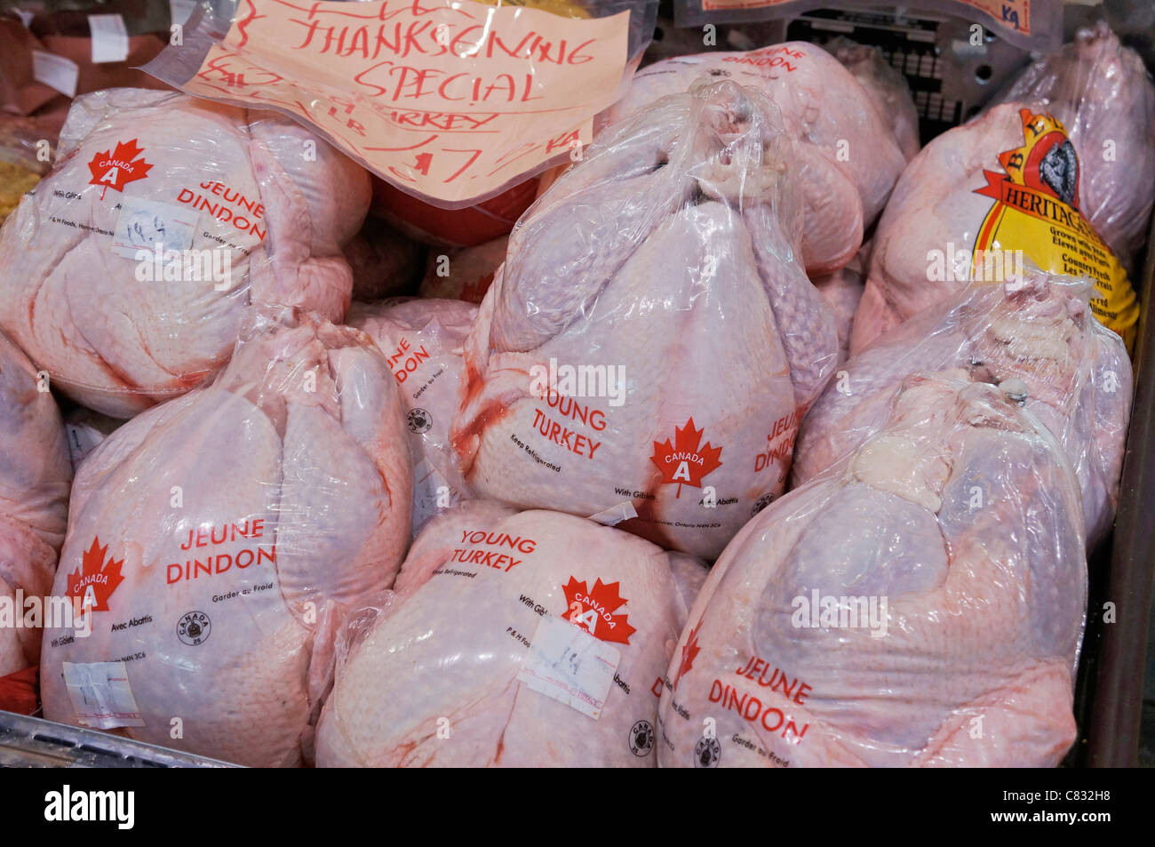 Packaged Turkeys, Canadian Young Turkeys, Grade A, plastic wrapped - Stock Image