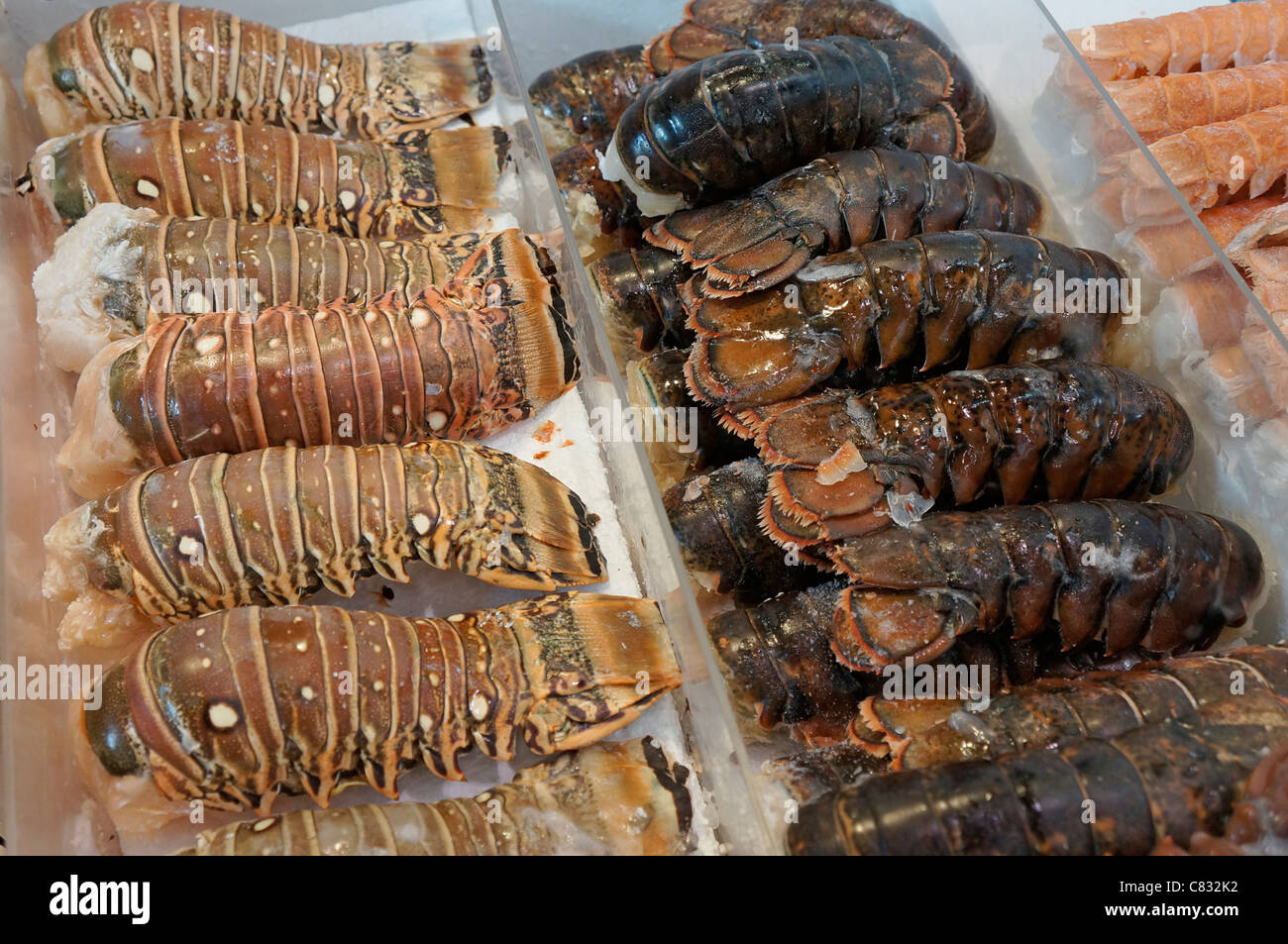Lobster Tails in Freezer Section of Food Store - Stock Image