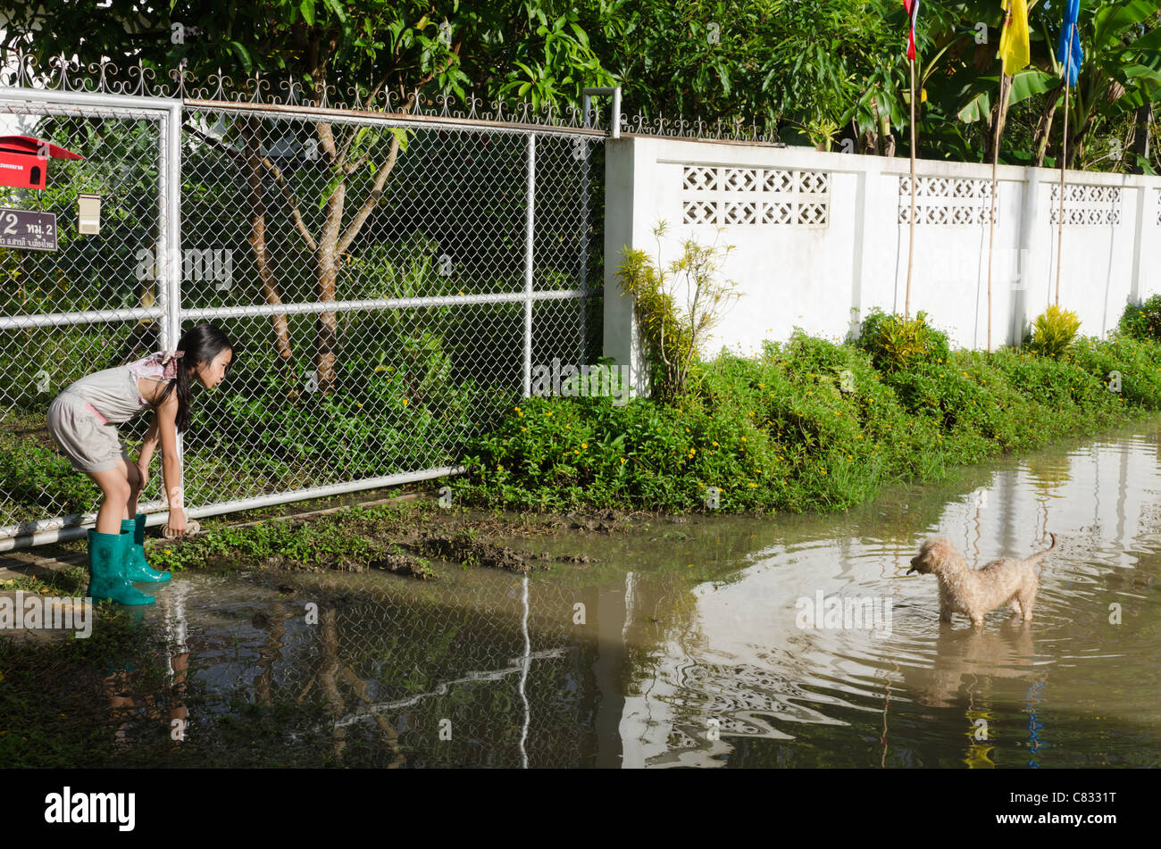 Young girl wearing rubber boots bends over and motions to small dog standing in flooded road by gate of her house - Stock Image