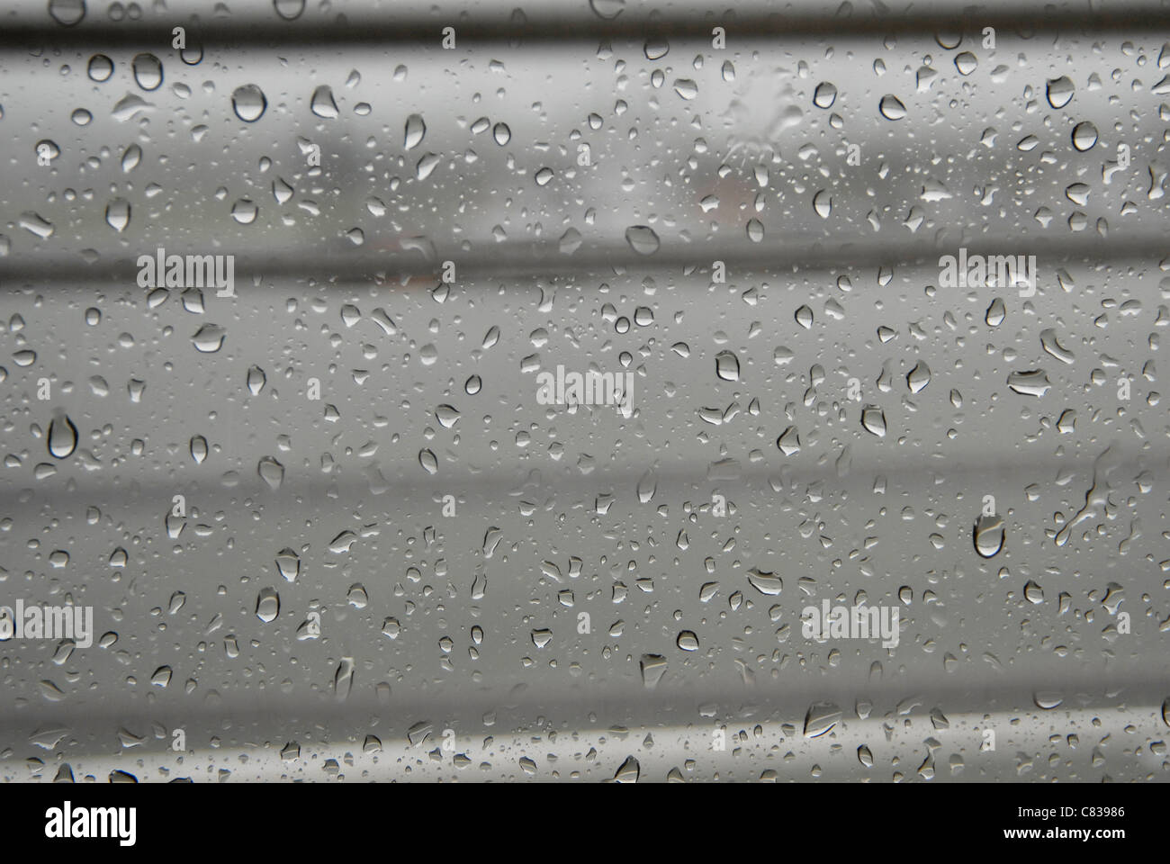 Raindrops on window - Stock Image